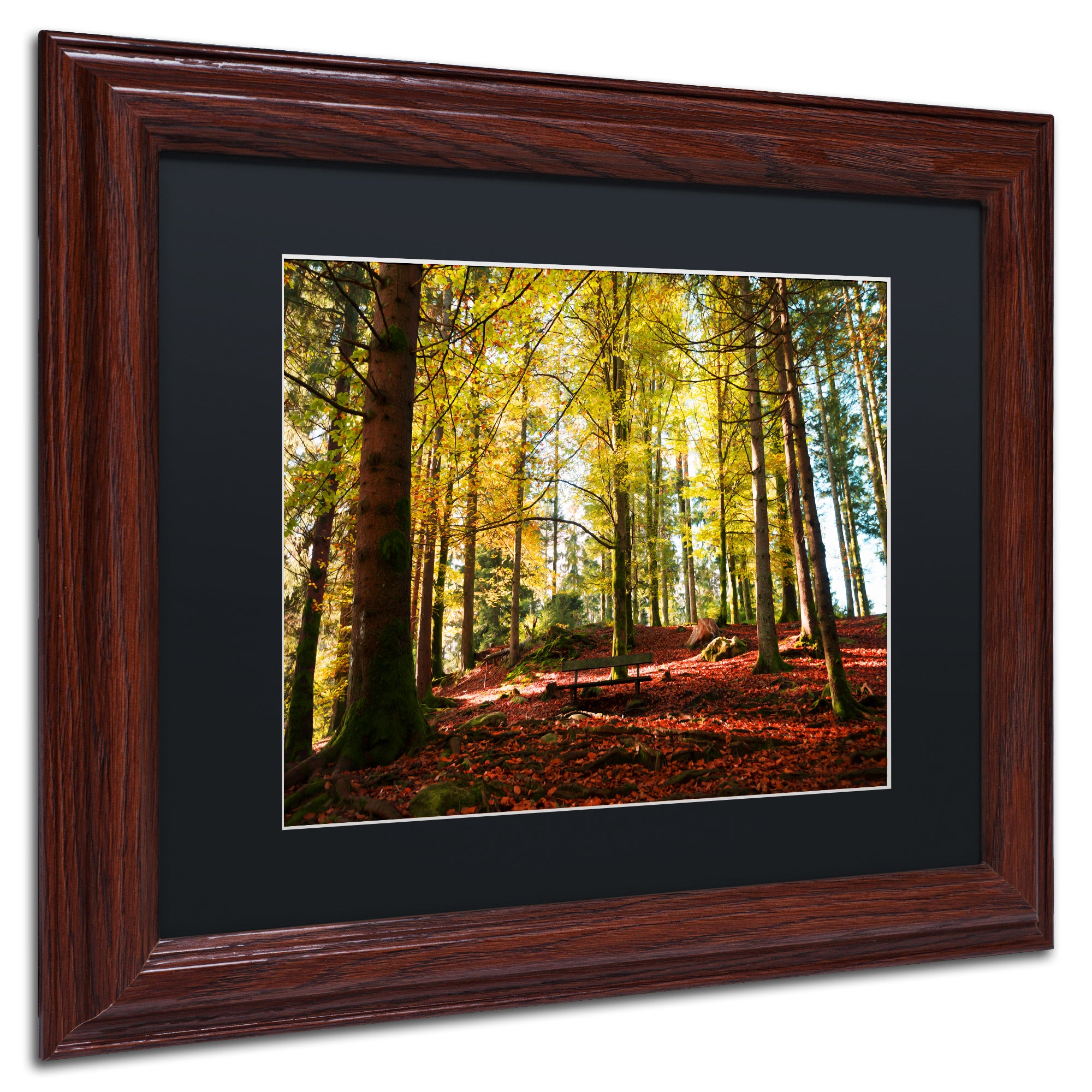 Philippe Sainte-Laudy \'The Autumn Bench\' Black Matte, Wood Framed ...