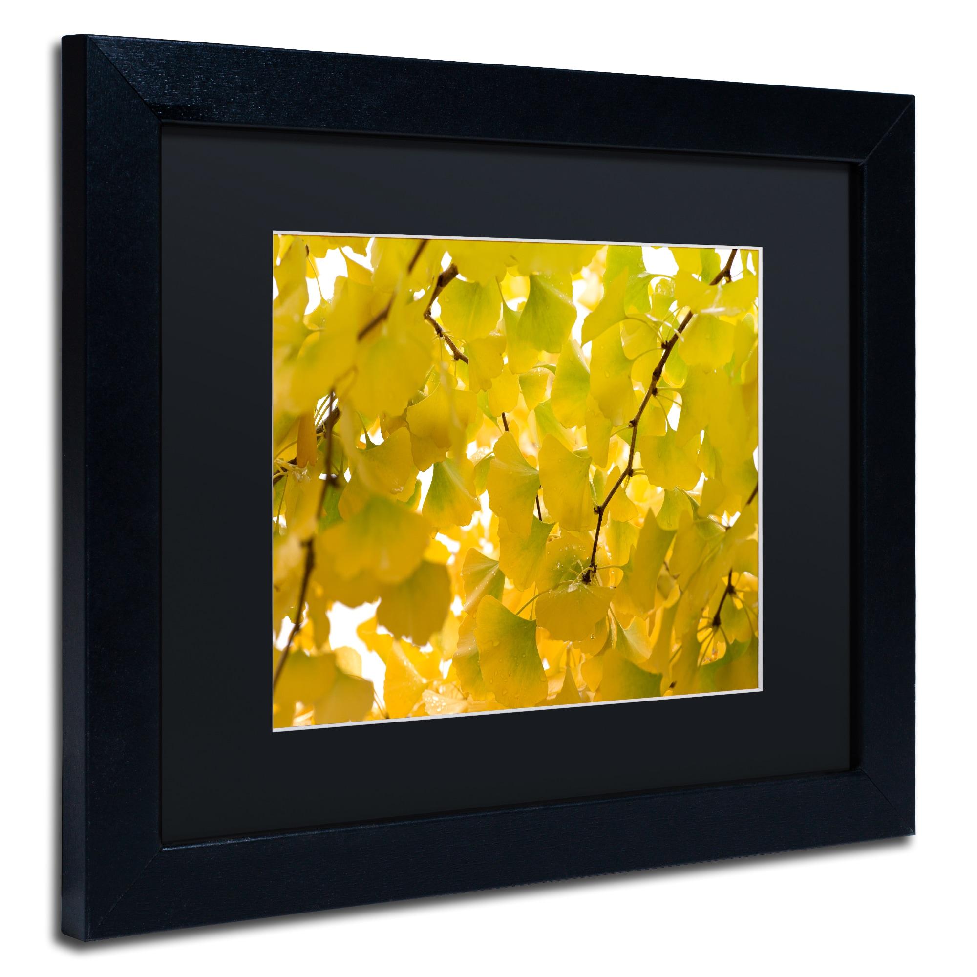 Nice Framed Medallion Wall Art Model - Wall Art Collections ...