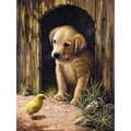 Junior Small Paint By Number Kit 8.75inX11.75inLabrador Puppy