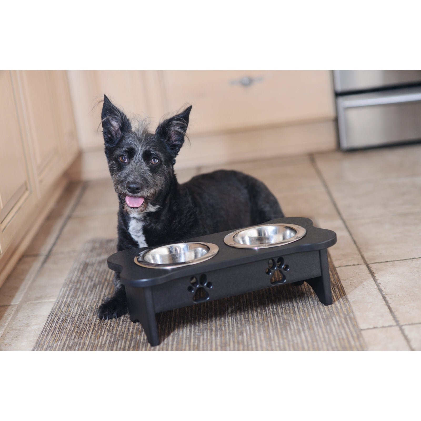 automatic hotspot pet feeder feeders large best reviews