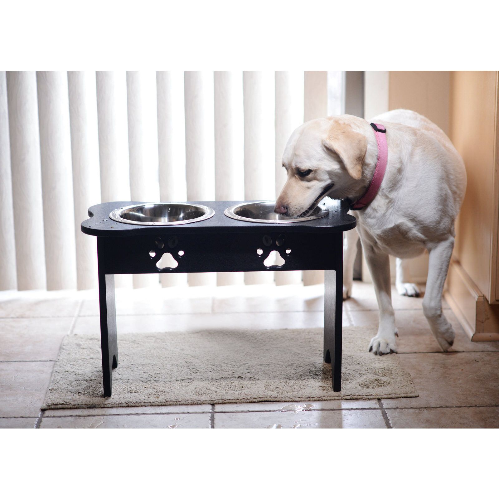 feeder product unleashed feeders raised over phuket life on overstock free supplies shipping pet orders