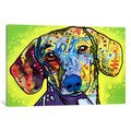iCanvas Dachsund by Dean Russo Canvas Print