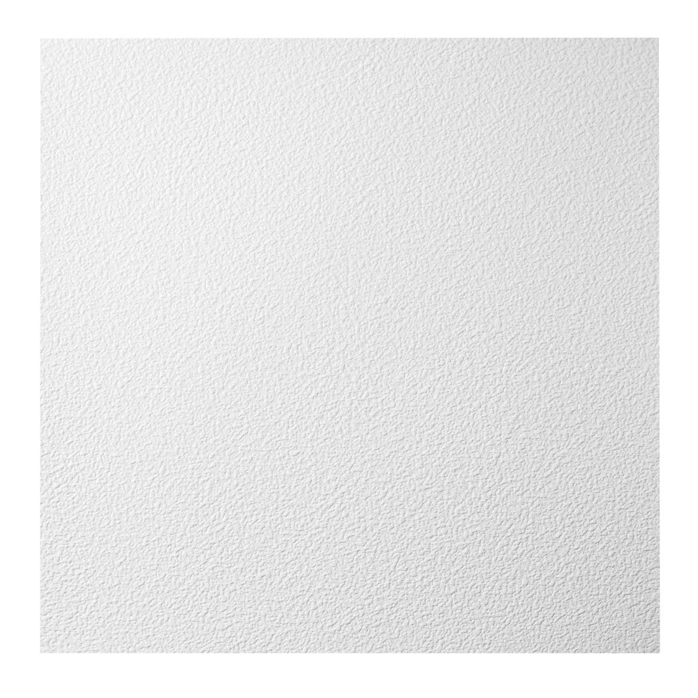 Genesis stucco pro white 2 x 2 ft lay in ceiling tile pack of 12 genesis stucco pro white 2 x 2 ft lay in ceiling tile pack of 12 free shipping on orders over 45 overstock 17733798 dailygadgetfo Gallery