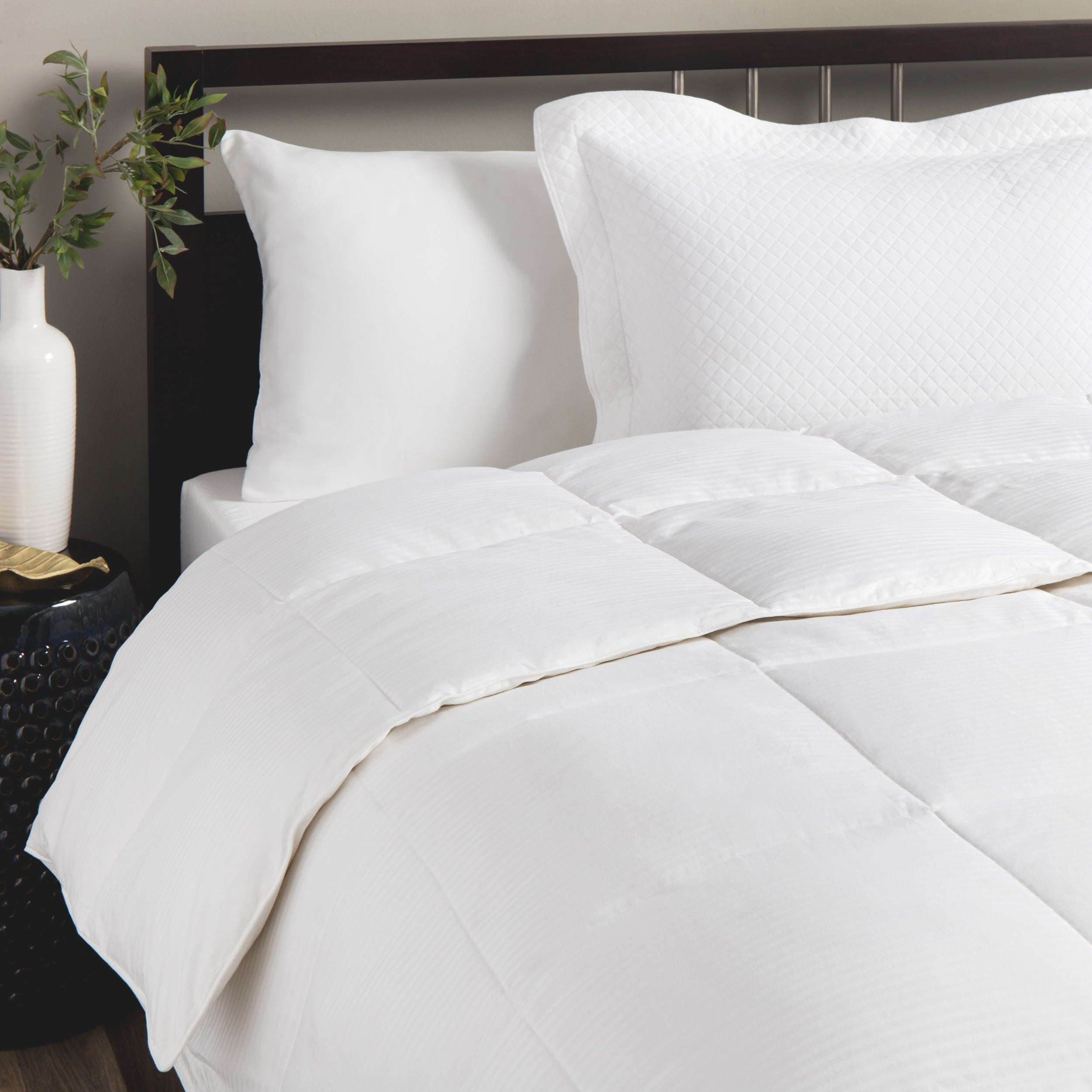 duvet lauren shipping comforter bath taylor goose down bedding feather free product overstock white today