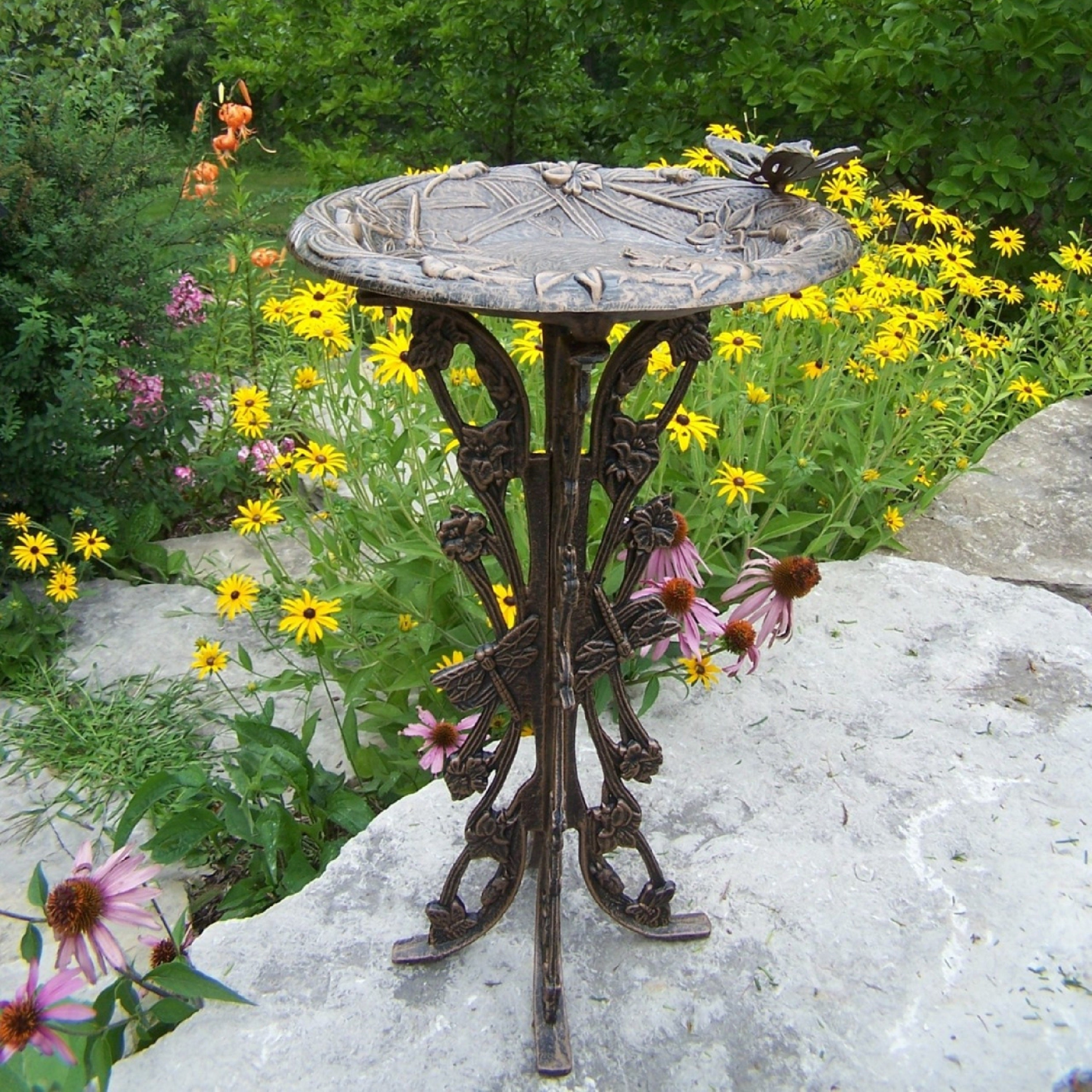 Premium Butterfly Dragonfly Bird Bath - Free Shipping Today ...