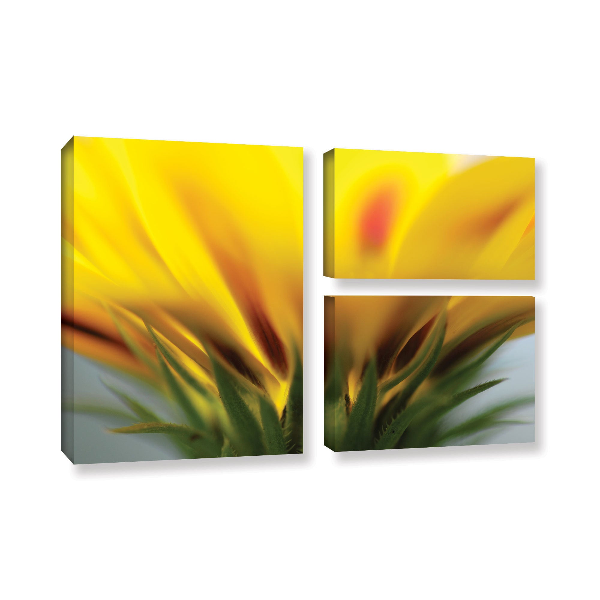 ArtWall Sydney Schardt\'s Mexican Daisy, 3 Piece Gallery Wrapped ...