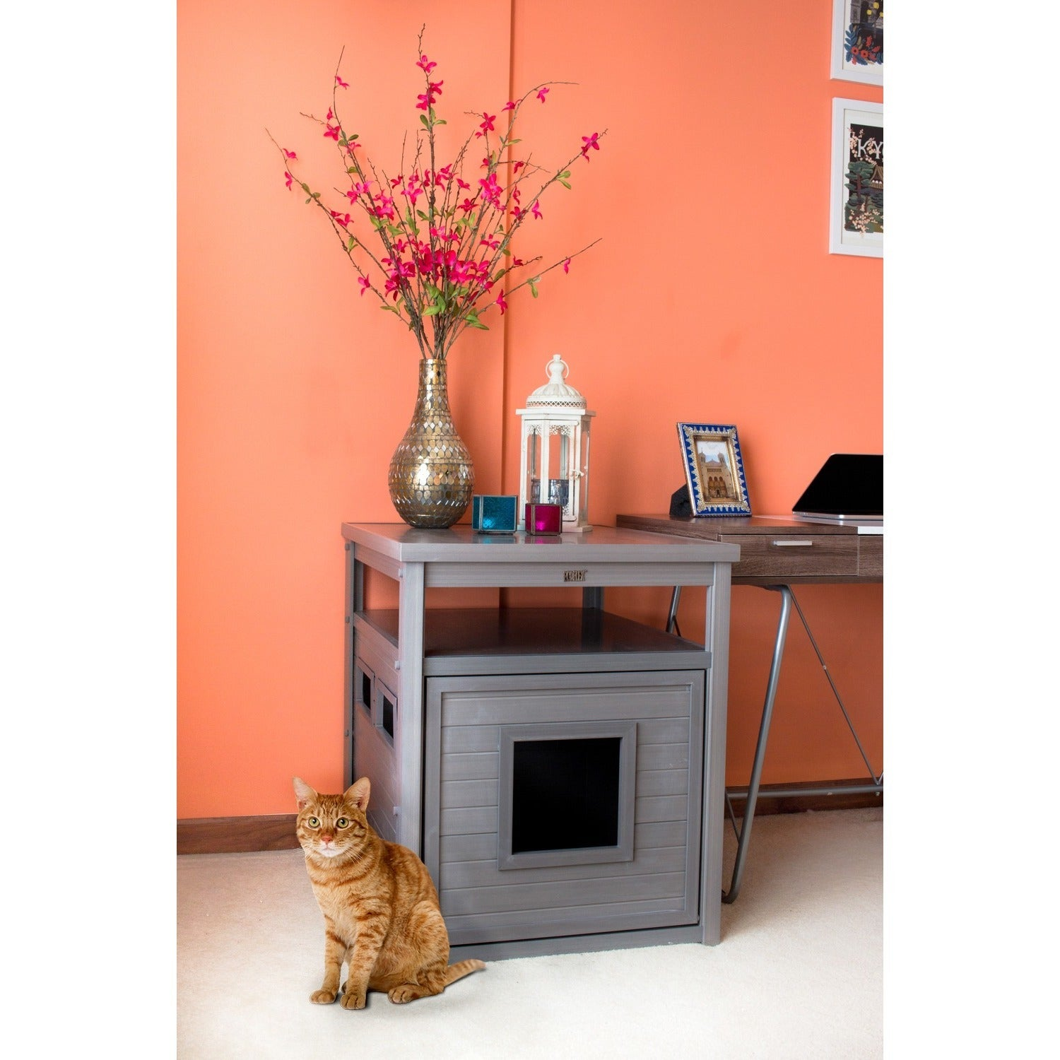 ecoFLEX Jumbo Litter Loo Hidden Kitty Litter Box End Table - Free Shipping  Today - Overstock.com - 18318928