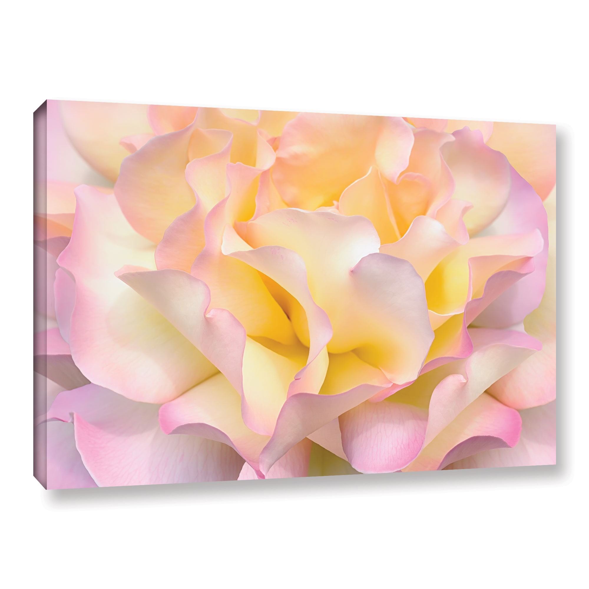 Shop ArtWall Cora Niele\'s Pink Yellow Rose Gallery Wrapped Canvas ...