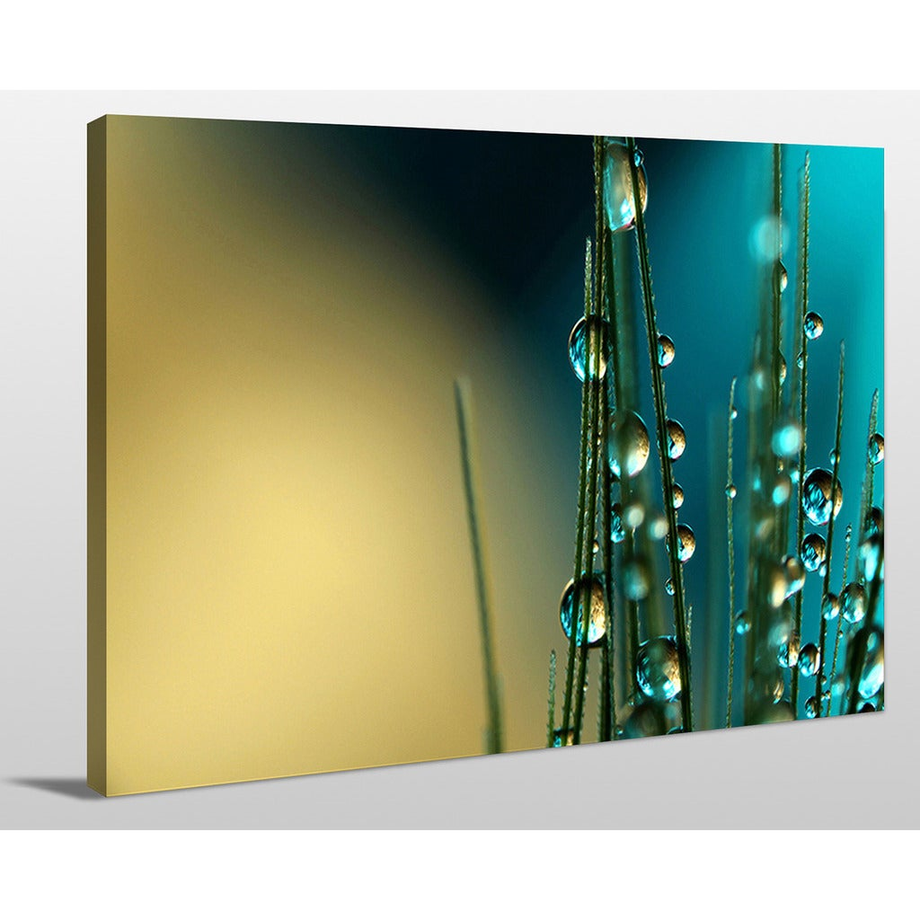 Sharon Johnstone \'Grass Seed with Blue\' Giclee Print Canvas Wall Art ...