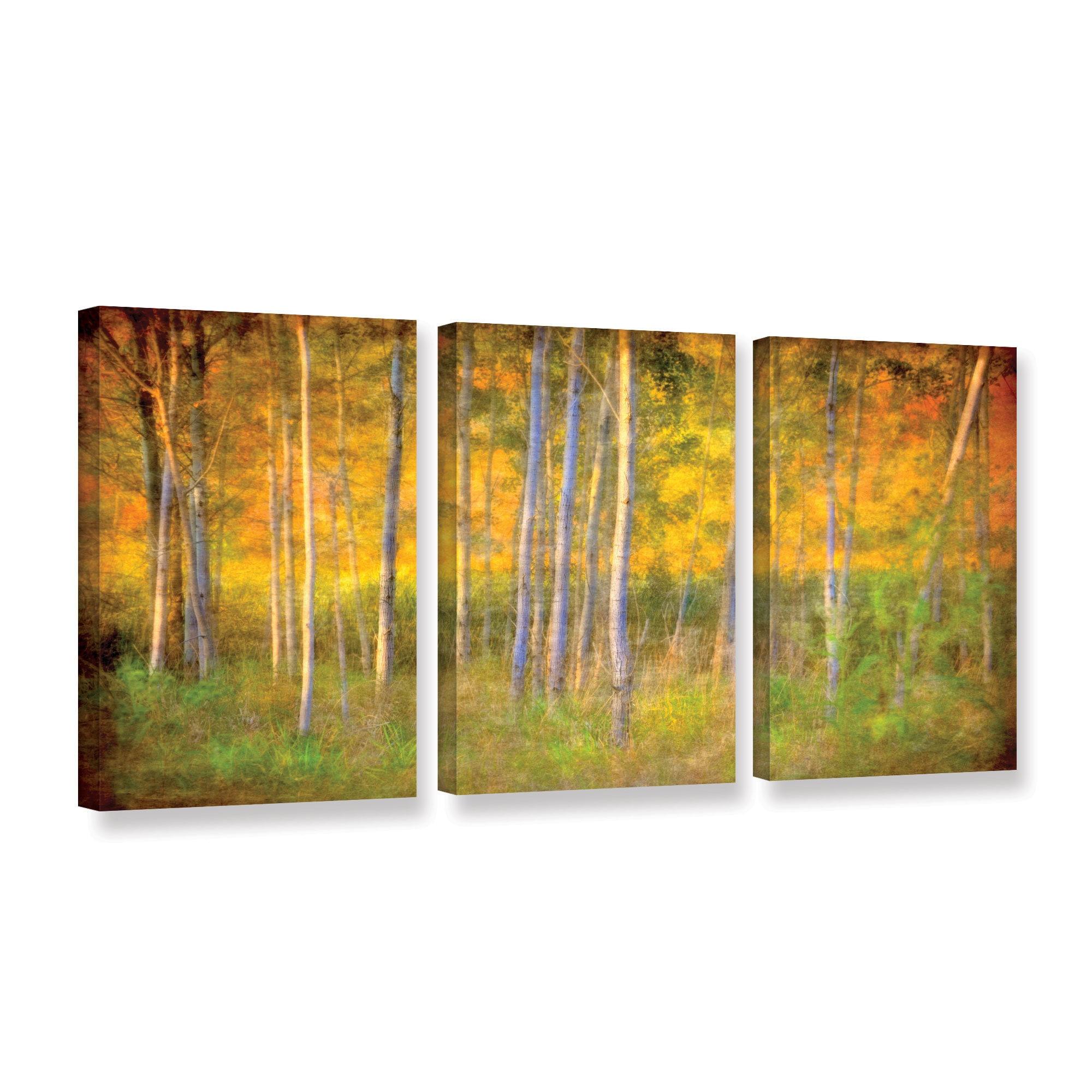 Antonio Raggio\'s \'Into the Wood\' 3-piece\' Gallery Wrapped Canvas Set ...