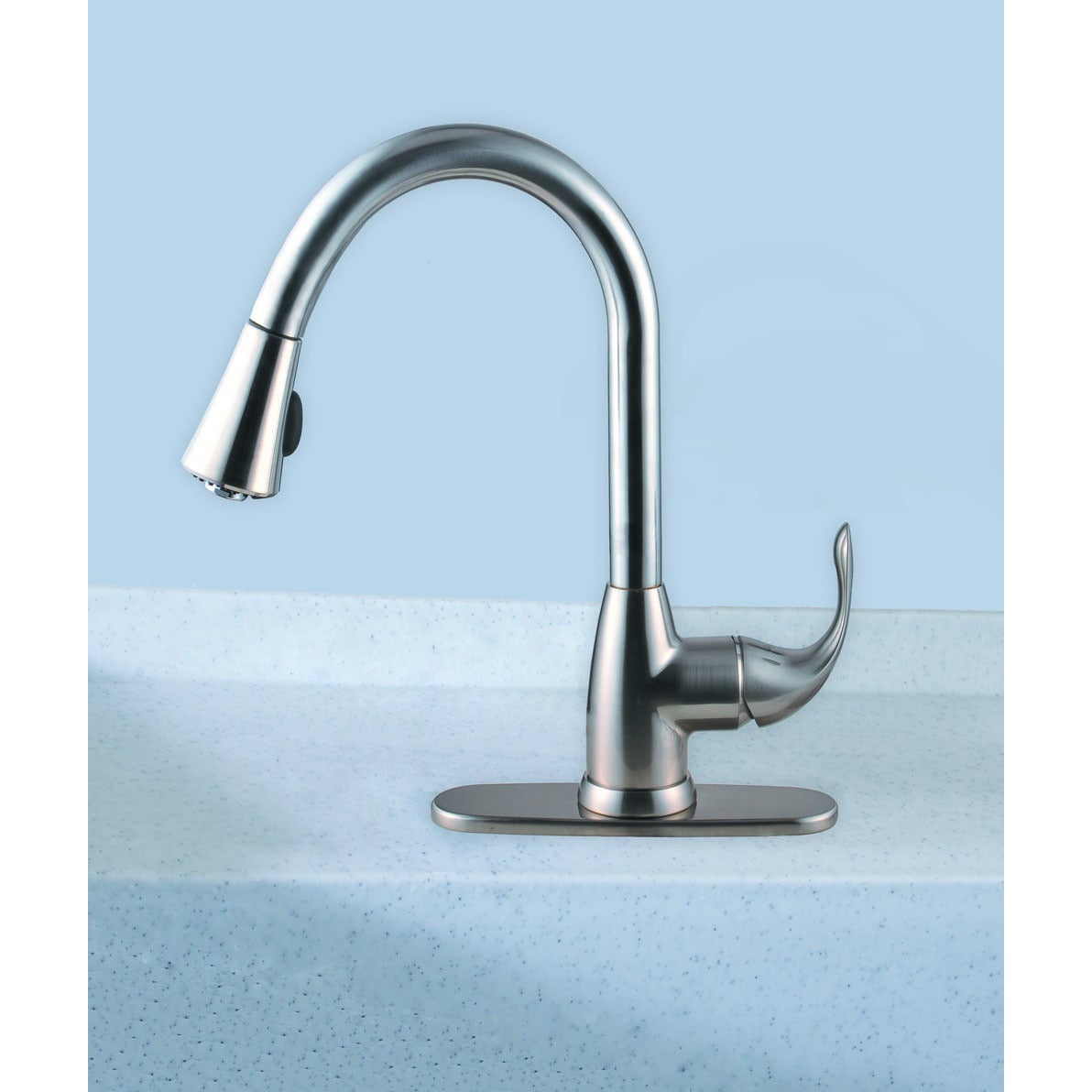 Century Home Living Stainless Steel Single-Handle Pull-Down Sprayer ...