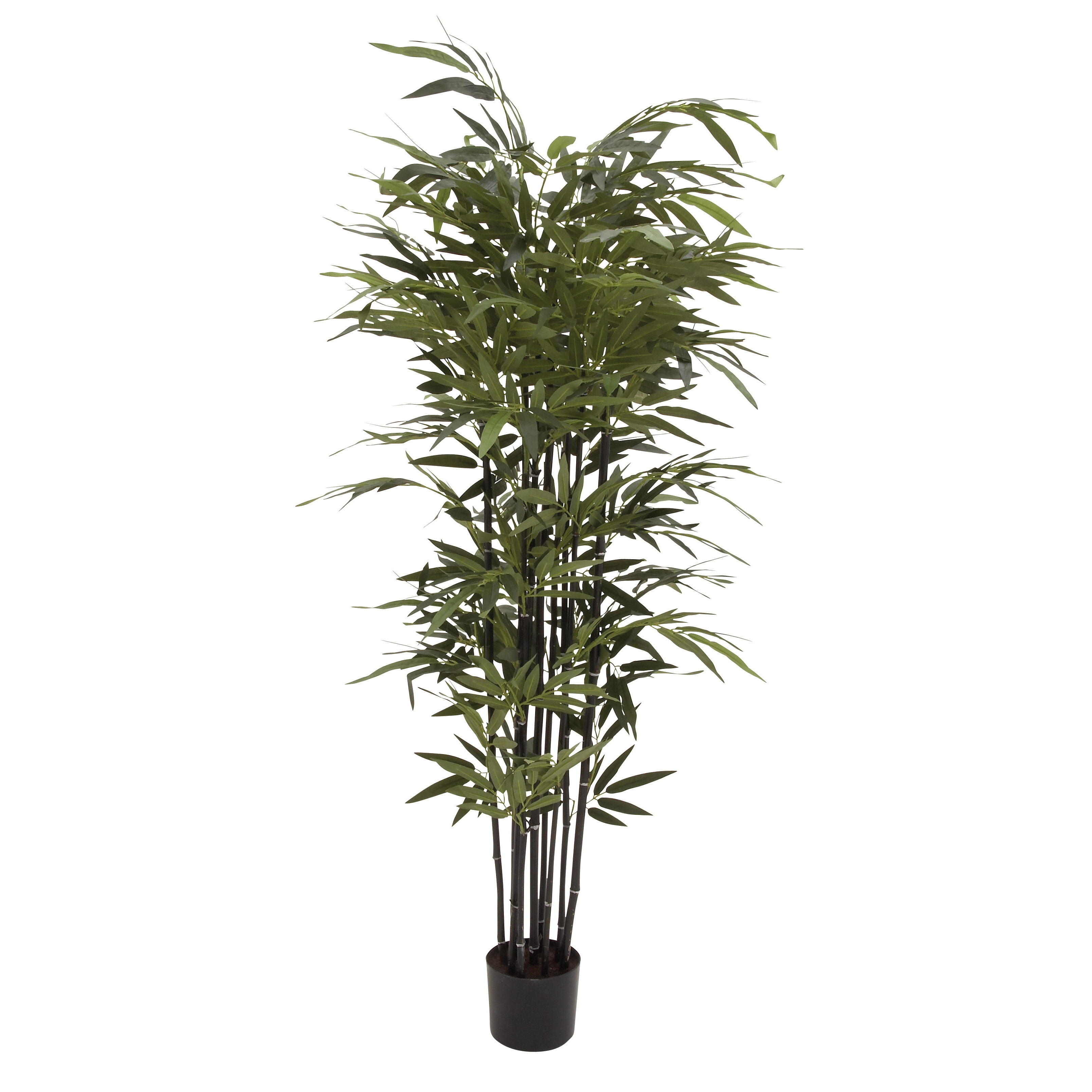 Natural Polyethylene Potted BK Bamboo Tree 27-inch, 70-inch - Free Shipping  Today - Overstock.com - 18640098