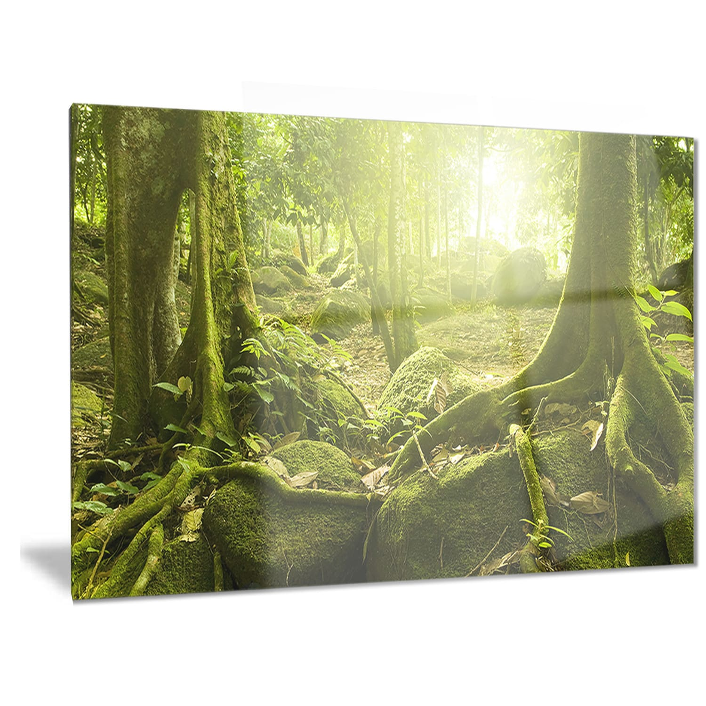 Designart \'Green Forest with Sun\' Landscape Photo Metal Wall Art ...