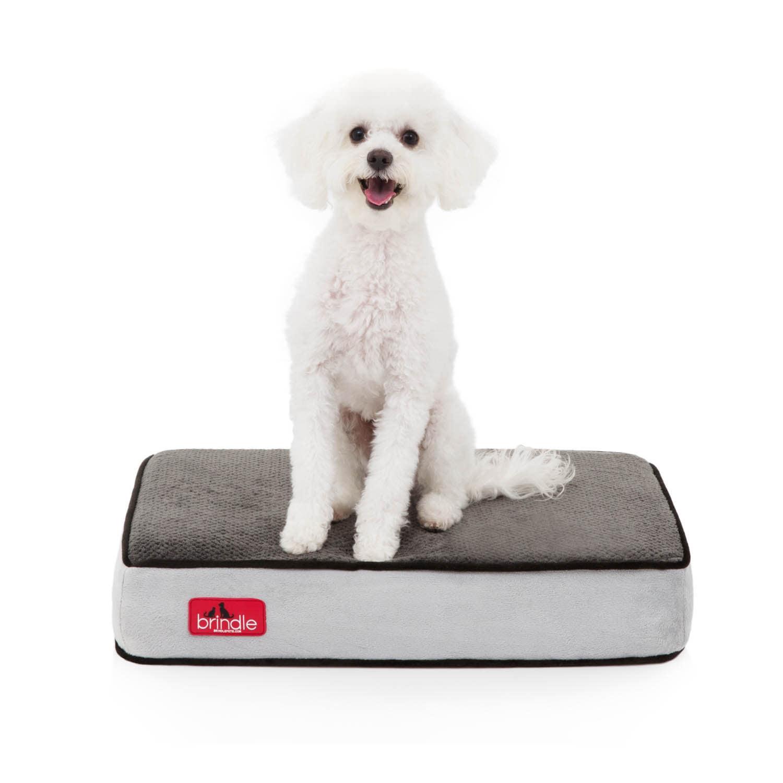 Shop Brindle Memory Foam 4-inch Orthopedic Dog Bed - Free Shipping ...