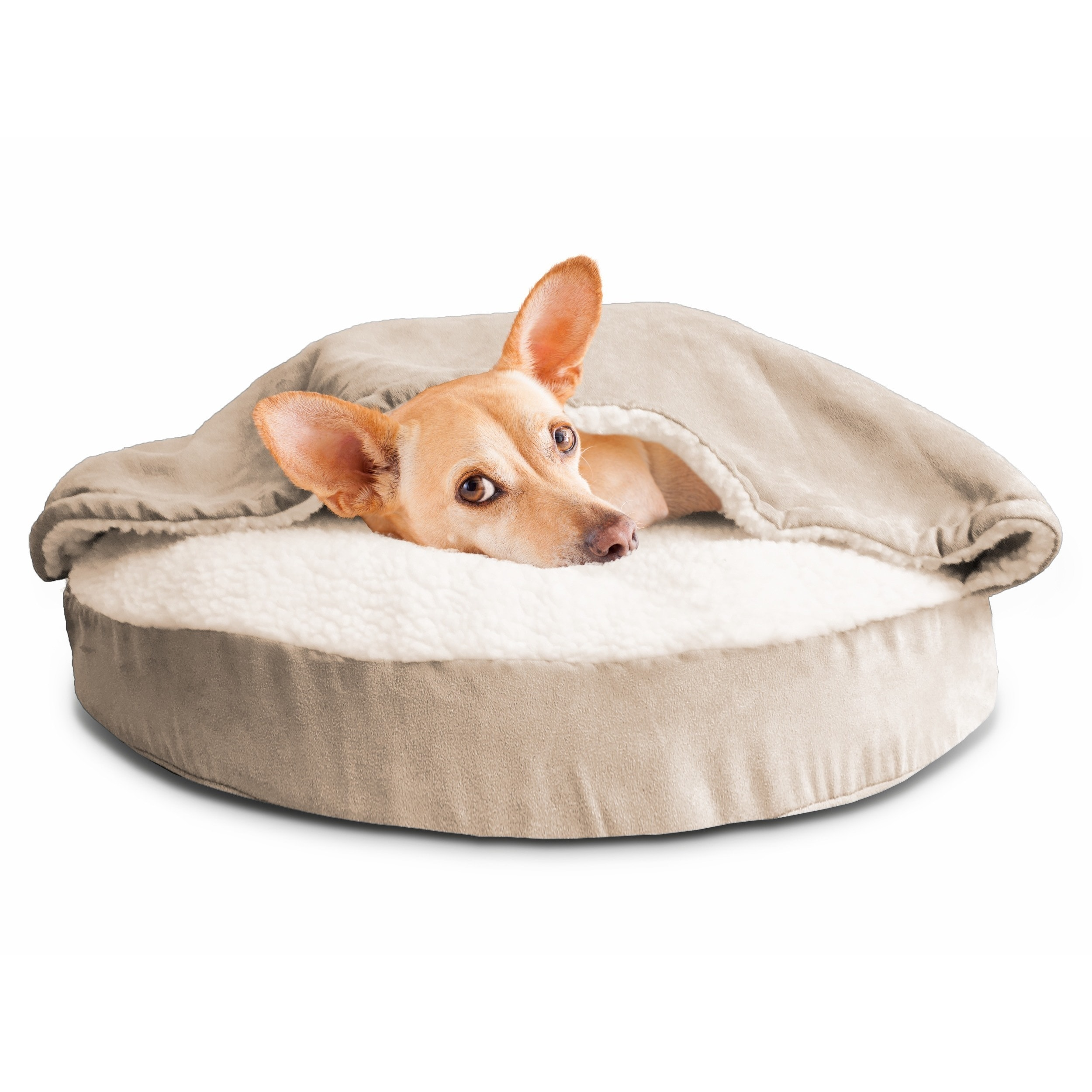 memory foam bed dogids beds chew resistant kevlar dog product orthopedic