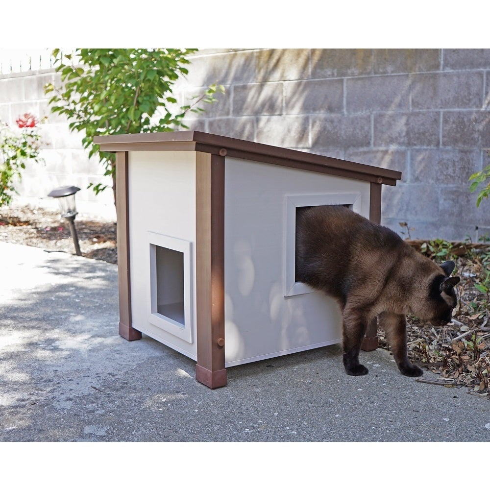Feral Cat Home Designs Html on squirrel home, chipmunk home, fast cat home, ferret home, mountain lion home, lizard home, duck home, pet cat home, dog cat home, stray cat home, cat lady home, pig cat home,