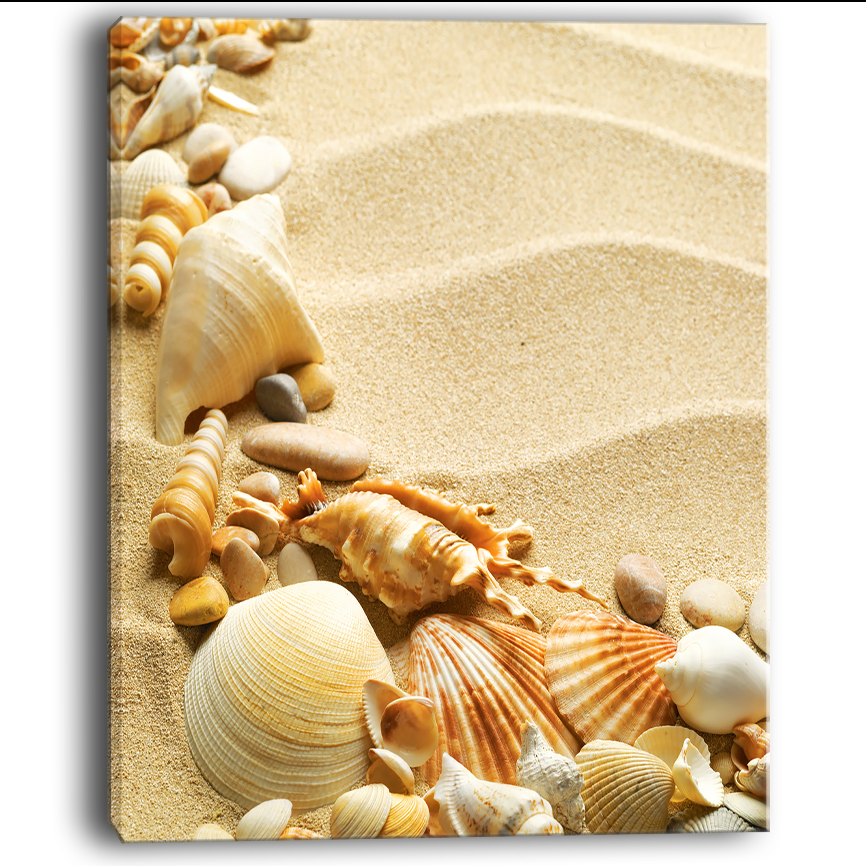 Fine Seashell Wall Art Decor Gallery - The Wall Art Decorations ...