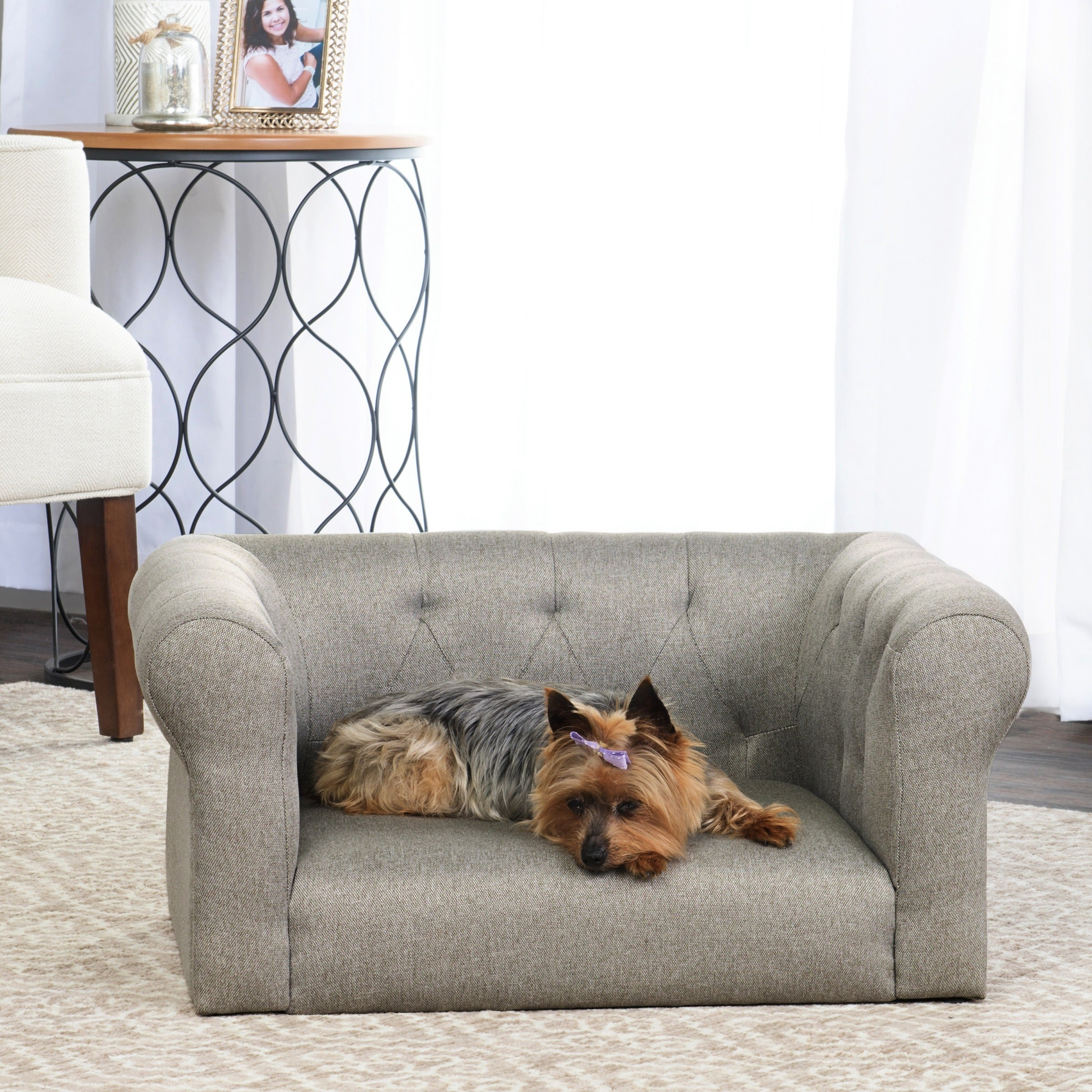 Shop Homepop Dog Bed Mini Sofa Free Shipping Today Overstock Com