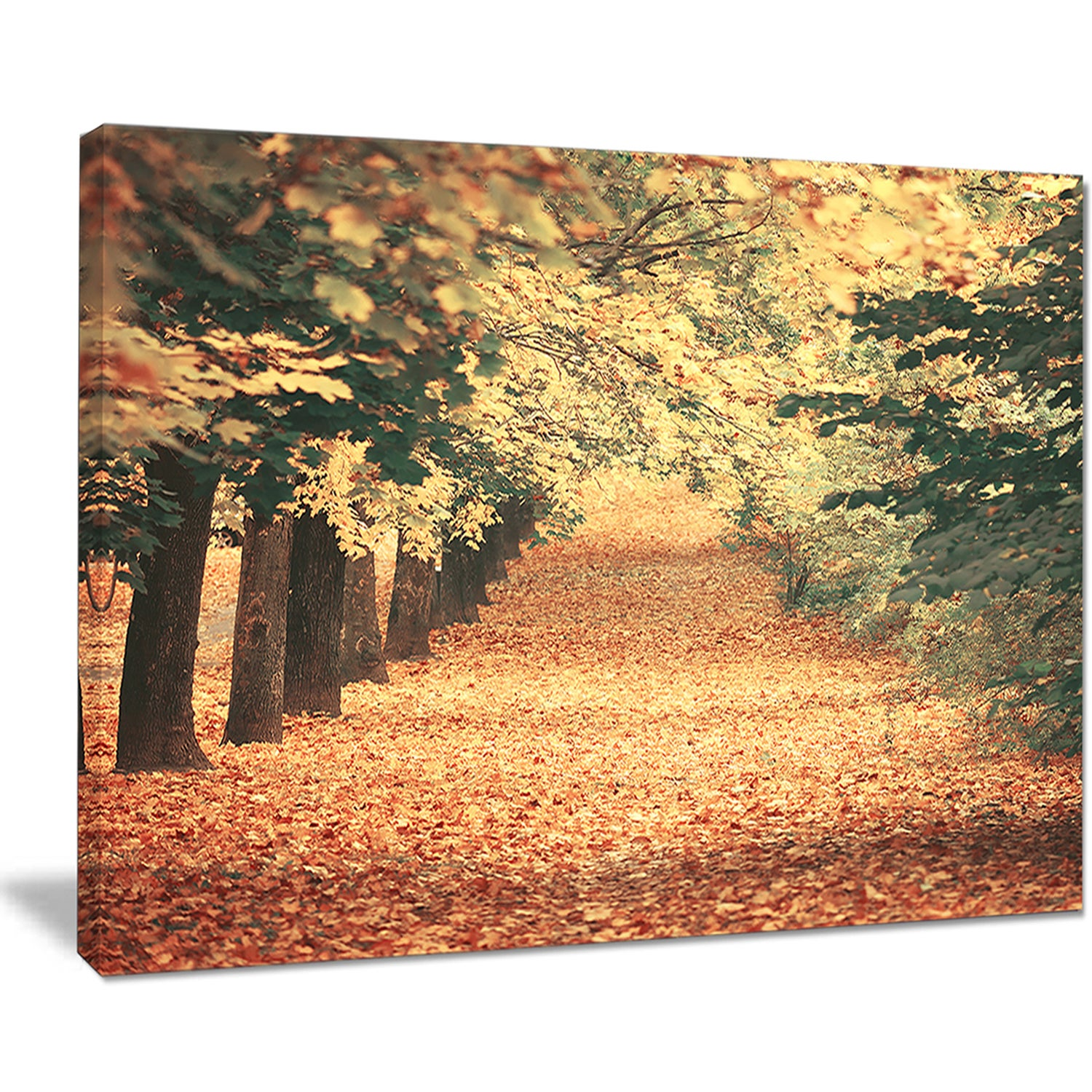 Autumn Forest with Walking Path - Modern Forest Canvas Wall Art ...