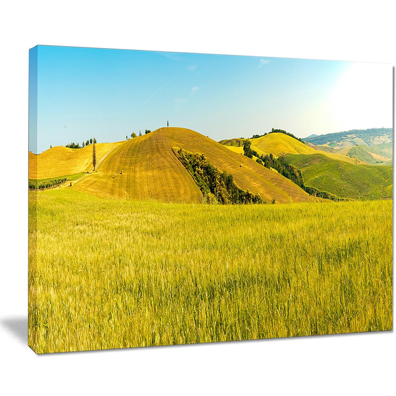 Tuscany Wheat Field on Sunny Day - Landscape Print Wall Artwork ...