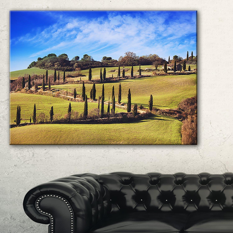 Cypress Trees Scenic Road Siena Italy - Oversized Landscape Wall Art ...