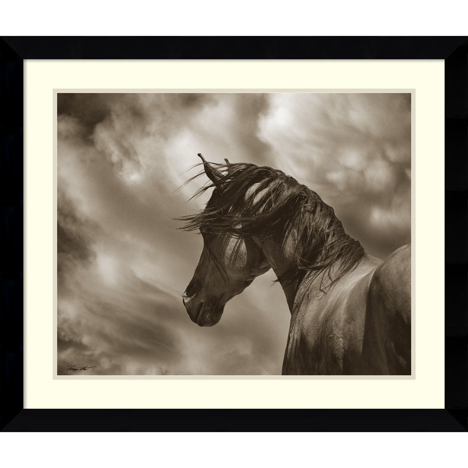 Framed Art Print \'The Renegade Horse\' by Barry Hart 33 x 28-inch ...