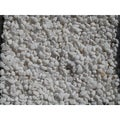 Exotic Pebbles & Aggregates BPWS-461 5-pound White Bean Pebble