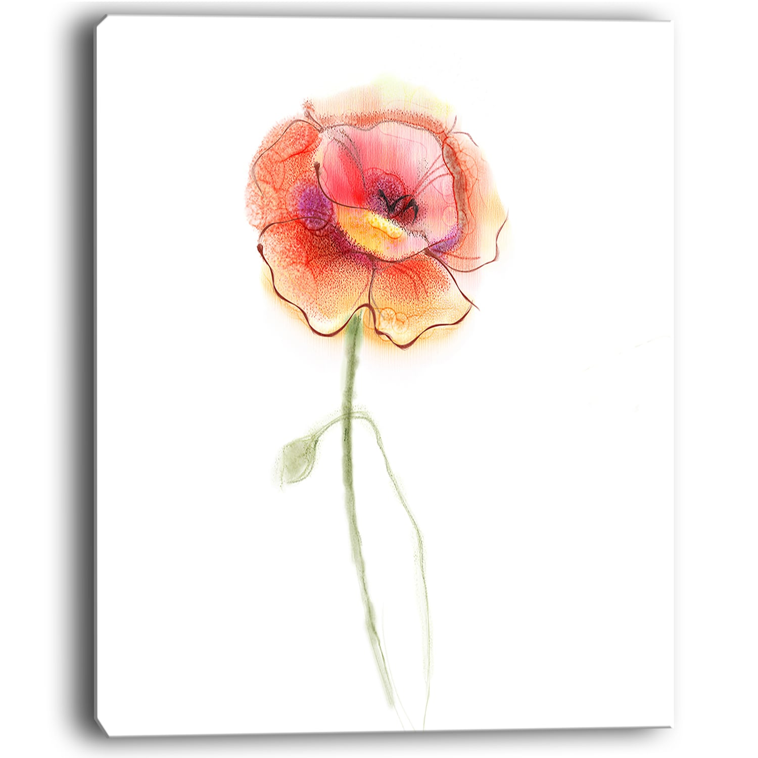 Isolated Watercolor Poppy Flower Large Flower Canvas Wall Art