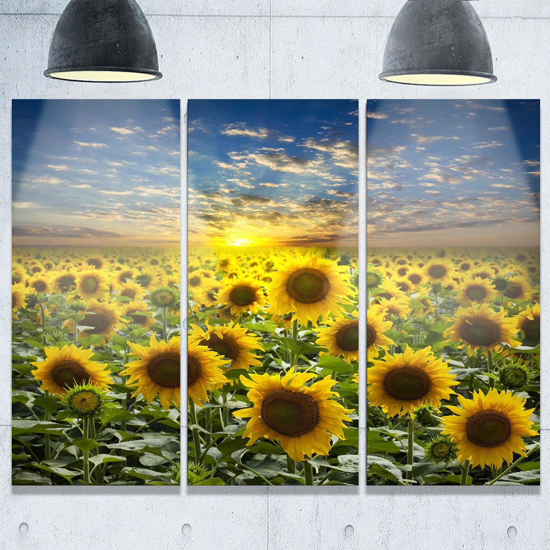 Designart - Field of Blooming Sunflowers - Large Flower Glossy Metal ...