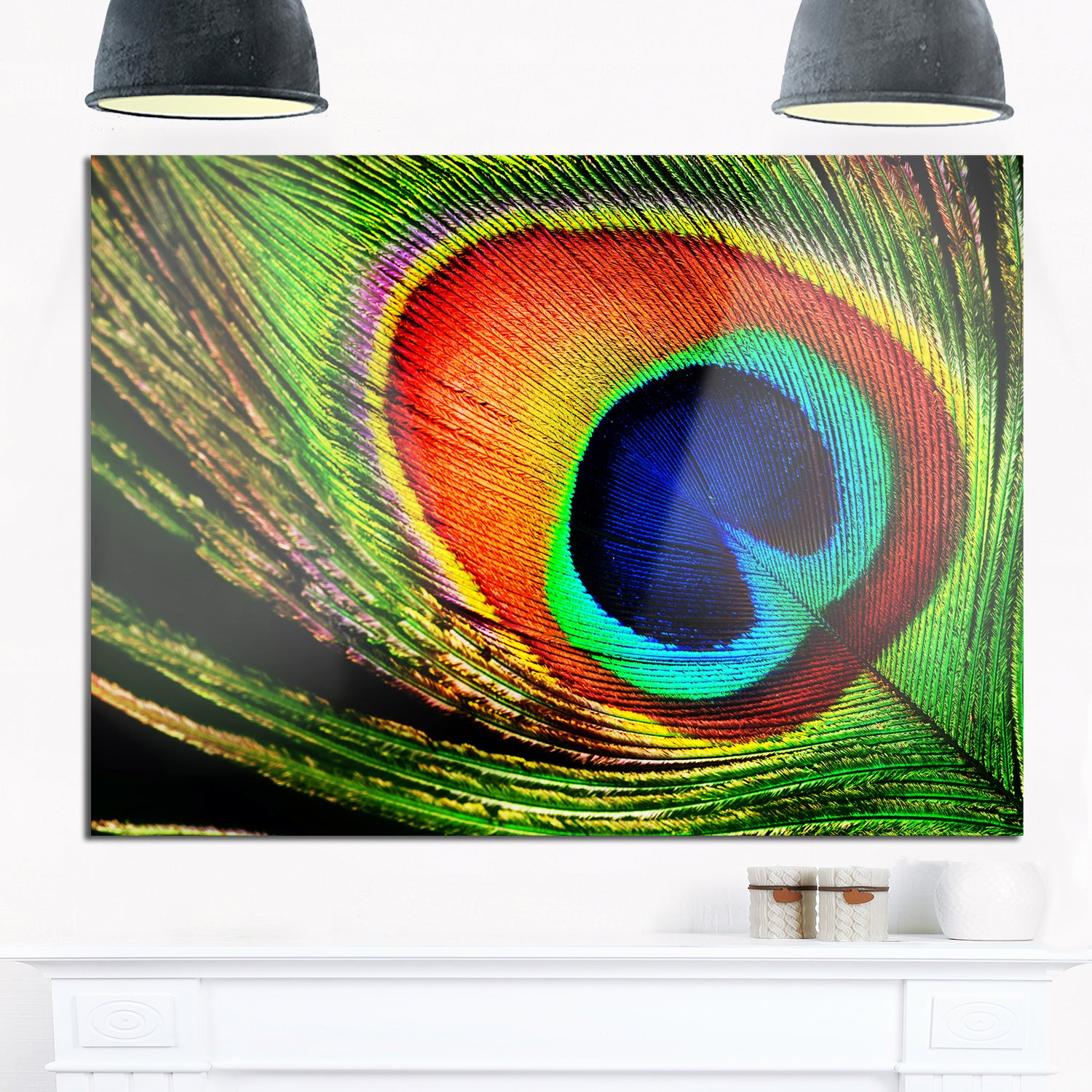 Peacock feather photography glossy metal wall art free shipping today overstock 19553084