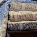 100% Cotton All Season Thermal Plaid Blanket