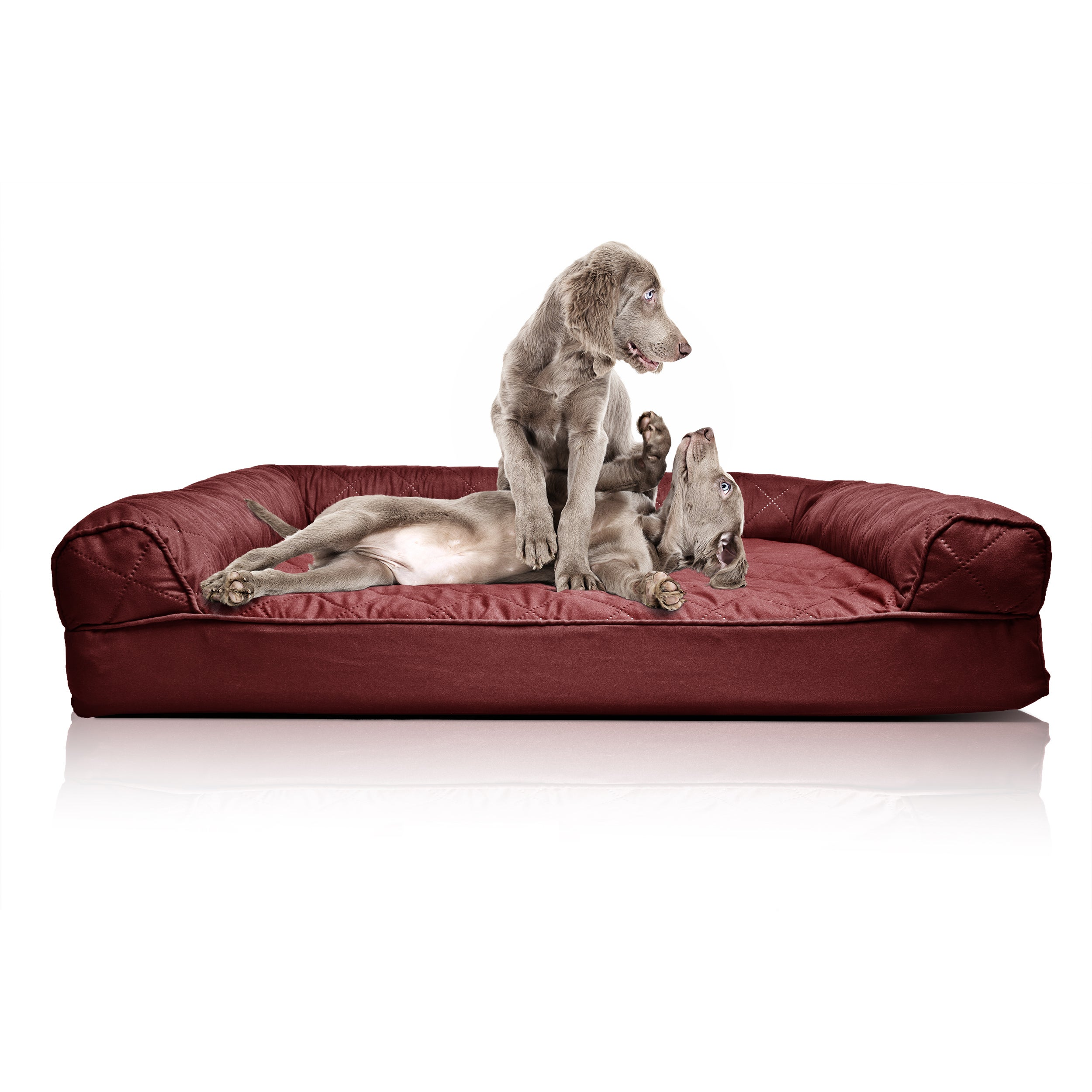 Shop FurHaven Quilted Orthopedic Sofa Style Pet Bed   Free Shipping On  Orders Over $45   Overstock.com   12924469