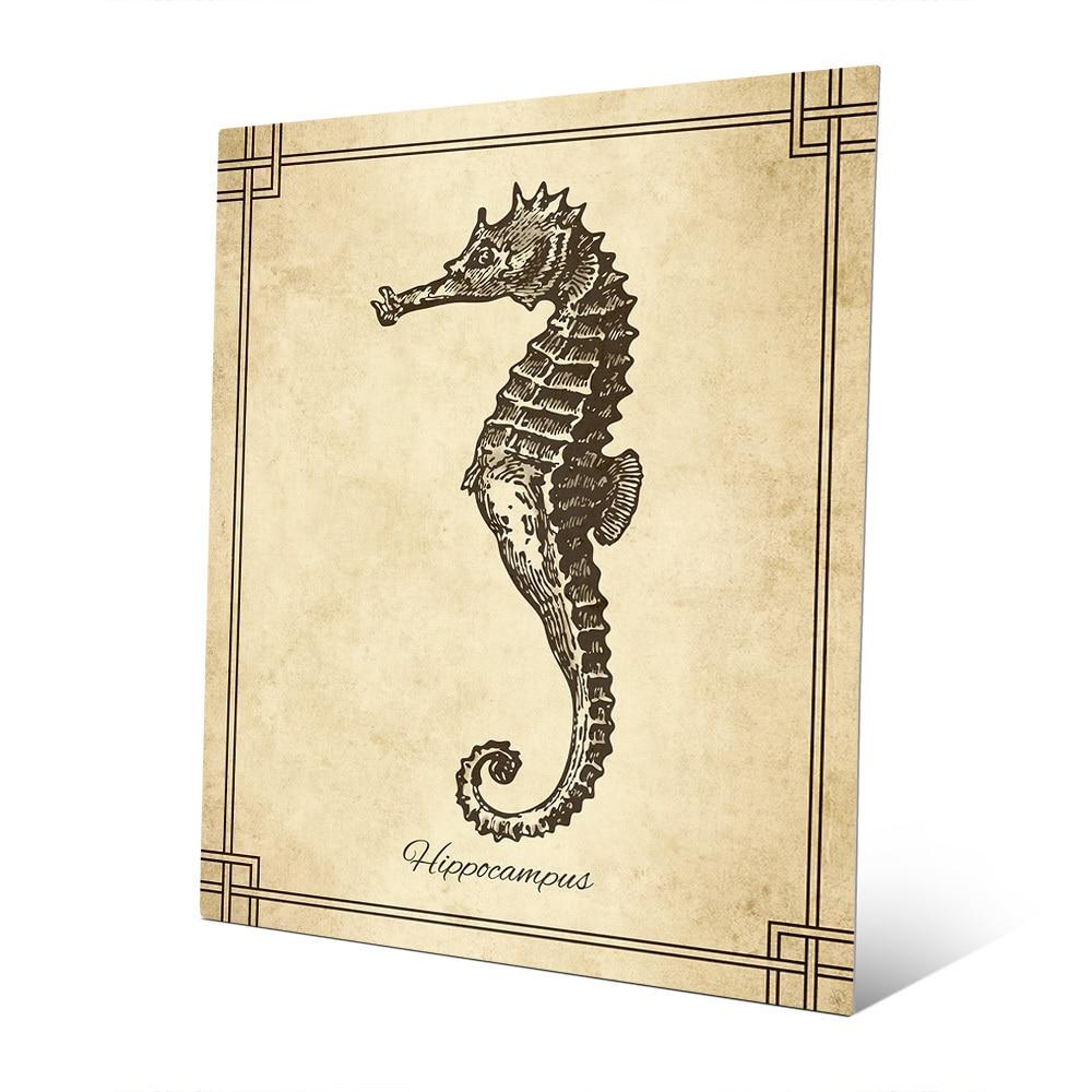 Shop \'Vintage Seahorse Zoology\' Metal Wall Art - On Sale - Free ...