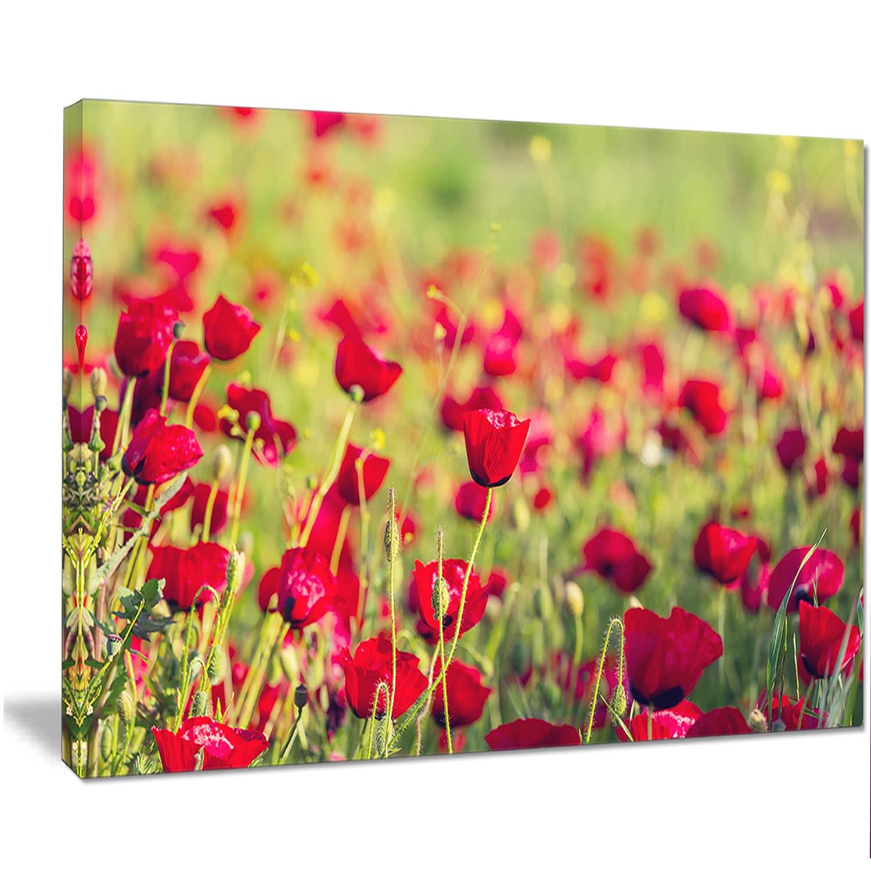 Shop Beautiful Poppy Flowers Background - Large Flower Wall Artwork ...