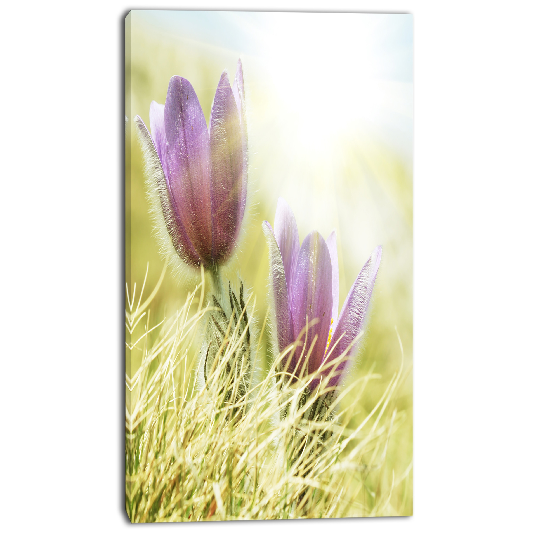 Shop Designart Large Purple Flowers In Green Grass Modern Flower