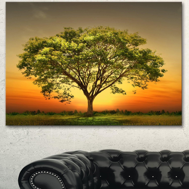 Designart \'Green Tree against Setting Sun\' Modern Trees Canvas Wall ...
