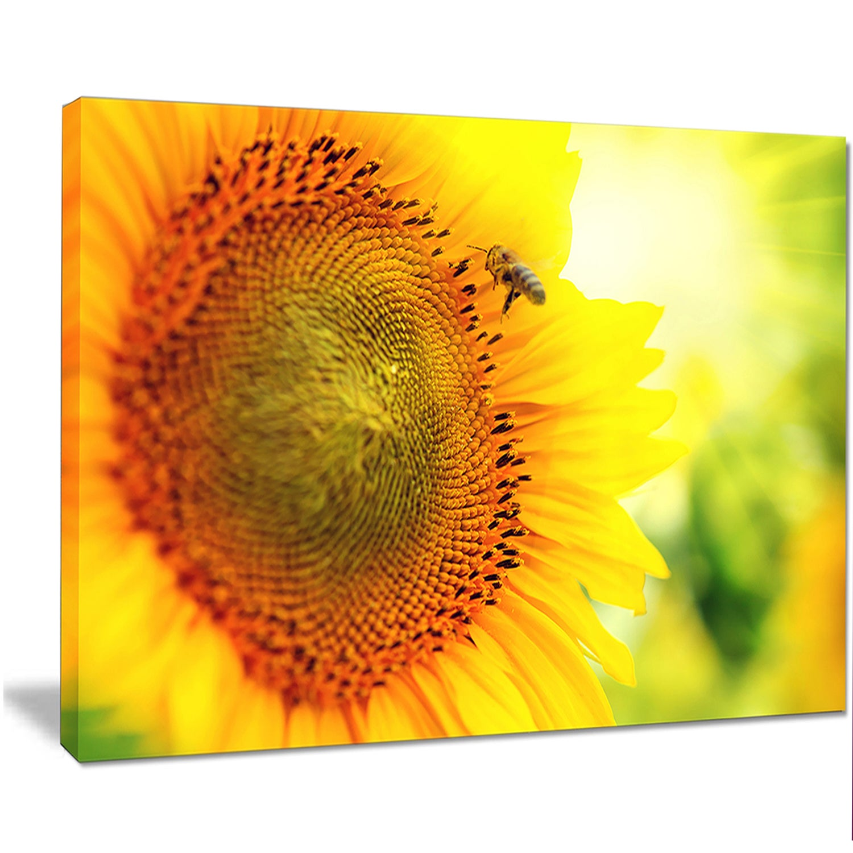 Shop Designart \'Sunflower Blooming on Field\' Large Animal Canvas ...