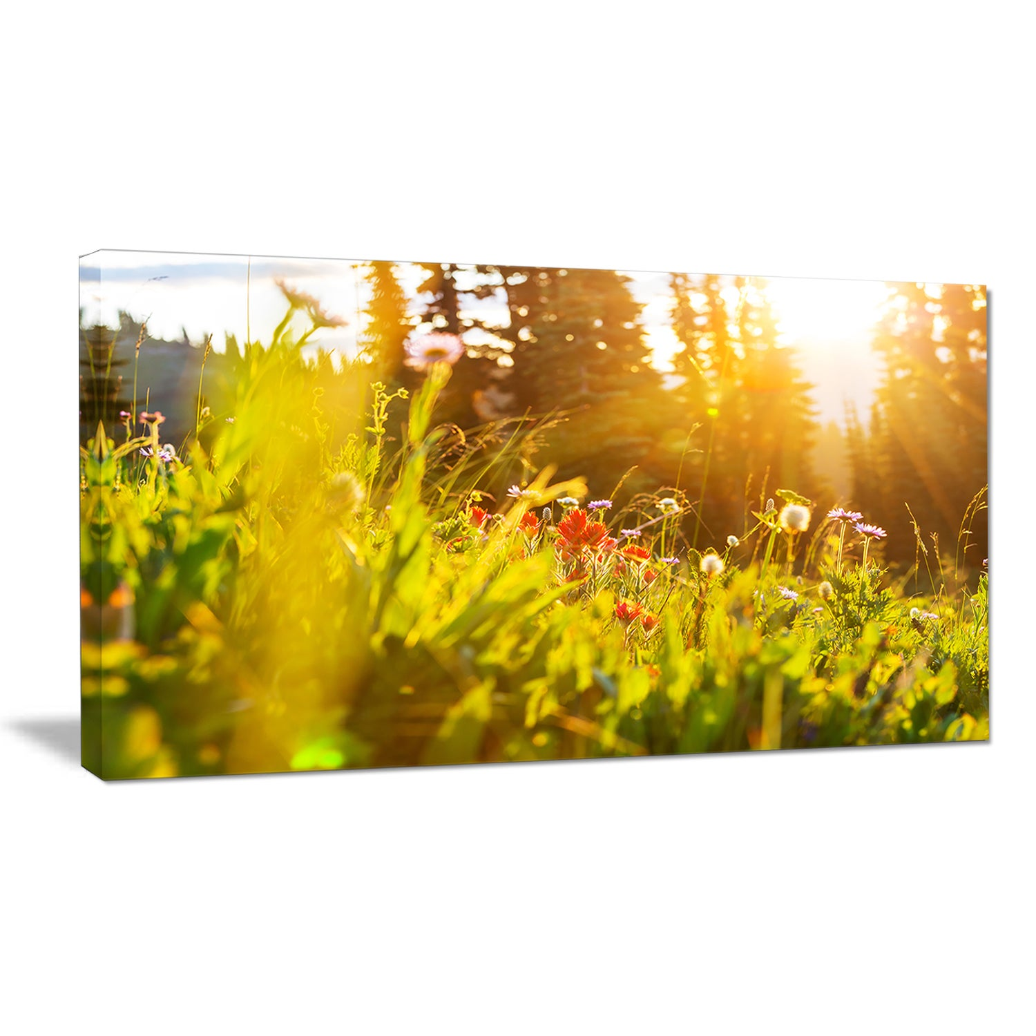 Designart \'Green Meadow with Summer Flowers\' Large Flower Canvas ...