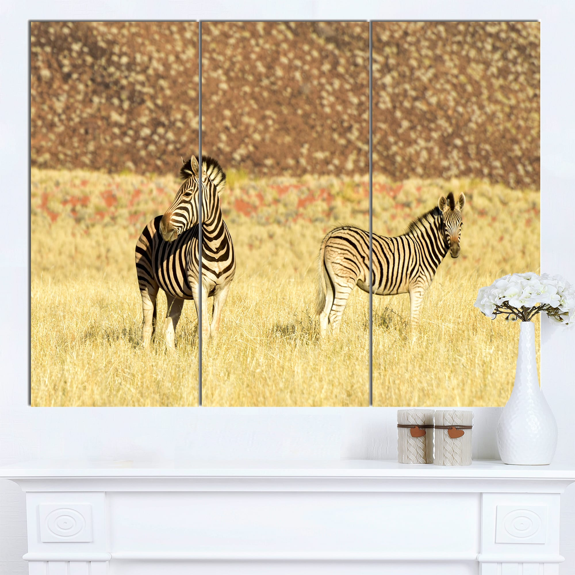 Designart \'Pair of Zebras in Namib Desert\' Animal Wall Art Canvas ...