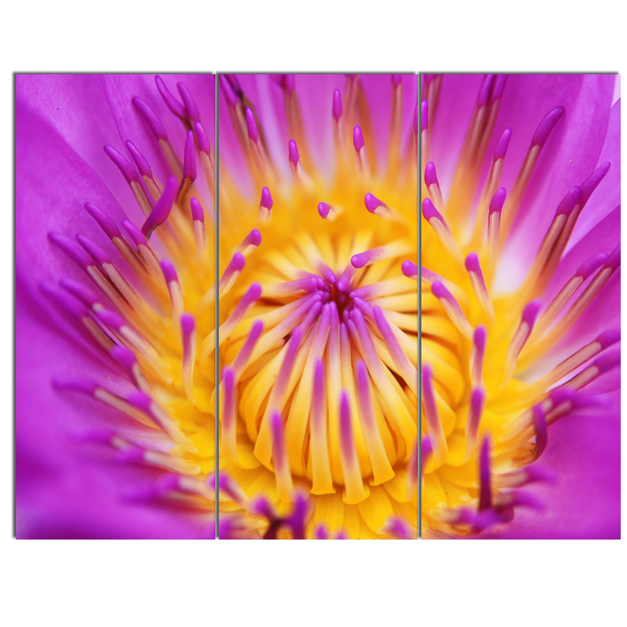 Designart pink yellow abstract lotus flower flowers canvas wall designart pink yellow abstract lotus flower flowers canvas wall artwork free shipping today overstock 20208788 izmirmasajfo