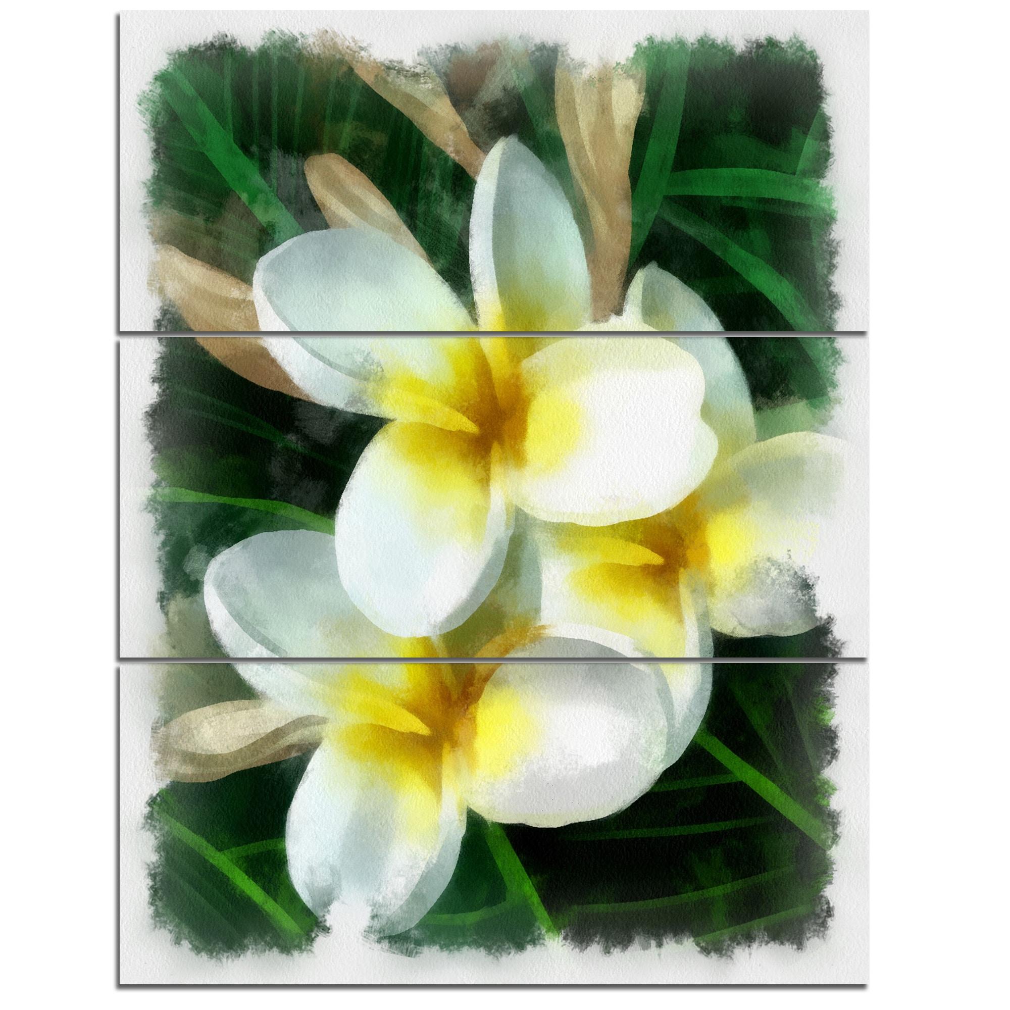 Shop Designart Cute Frangipani Flowers Watercolor Flower Canvas