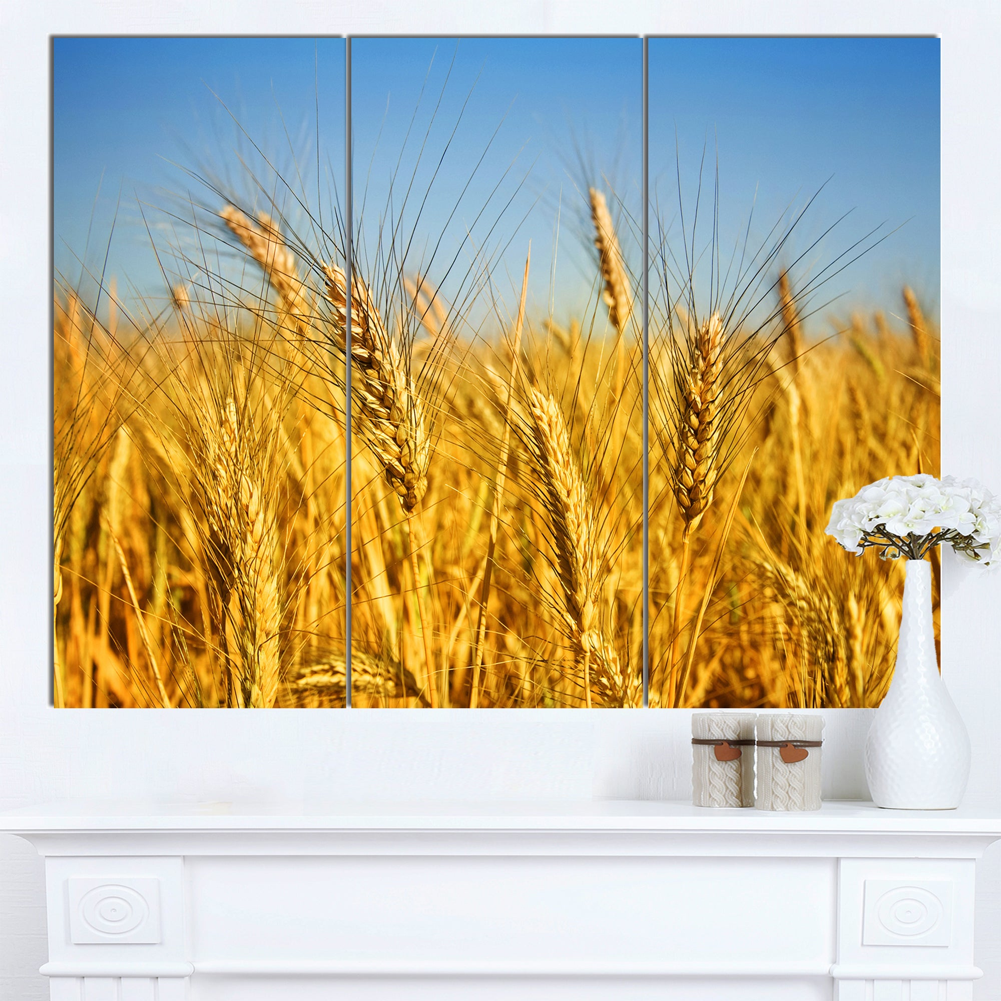 Shop Designart \'Bright Golden Wheat Field\' Landscape Wall Art Print ...