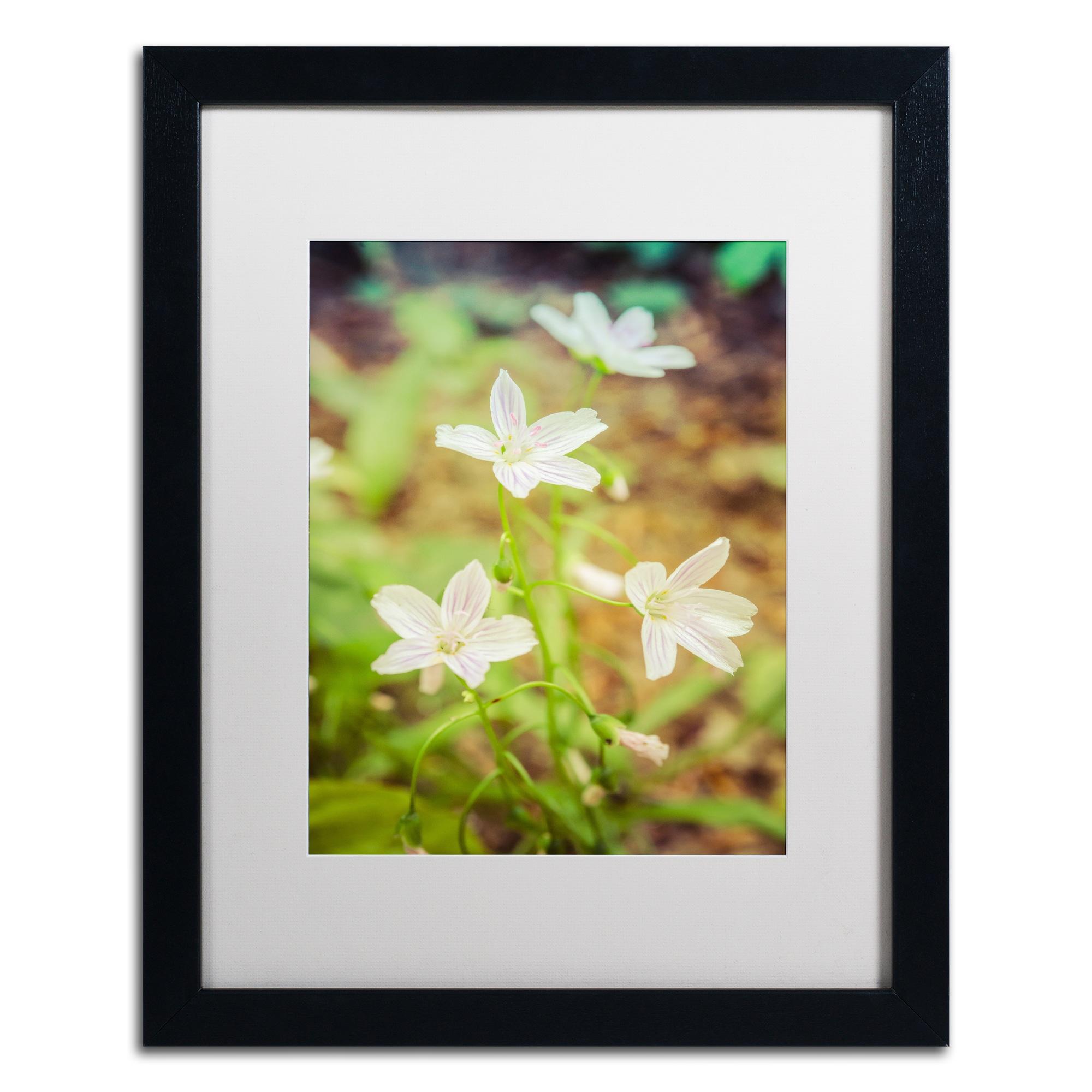 PIPA Fine Art \'Tranquil Carolina Spring Beauty\' Matted Framed Art ...