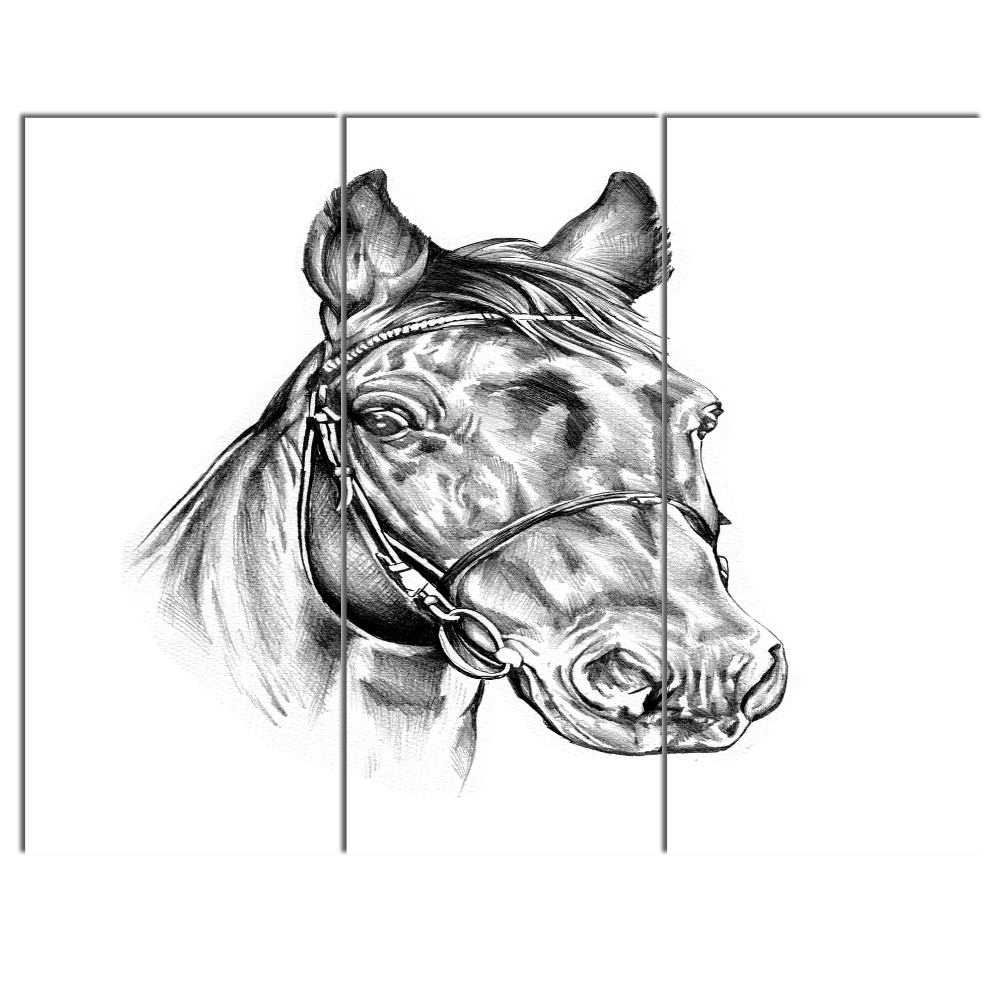 Shop designart freehand horse head pencil drawing modern animal canvas wall artwork free shipping today overstock 13615174