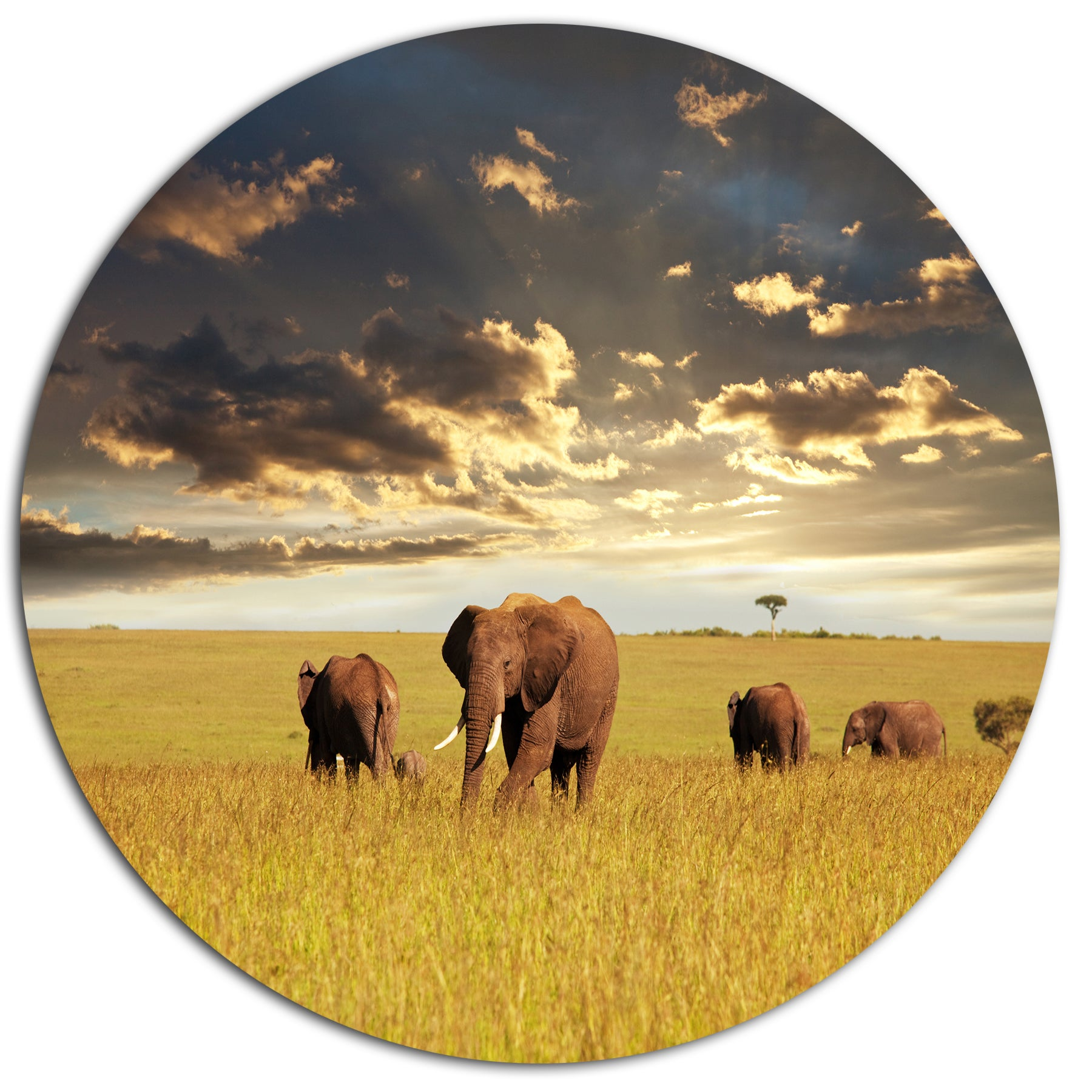 Amazing Africa Wall Art Gallery - The Wall Art Decorations ...
