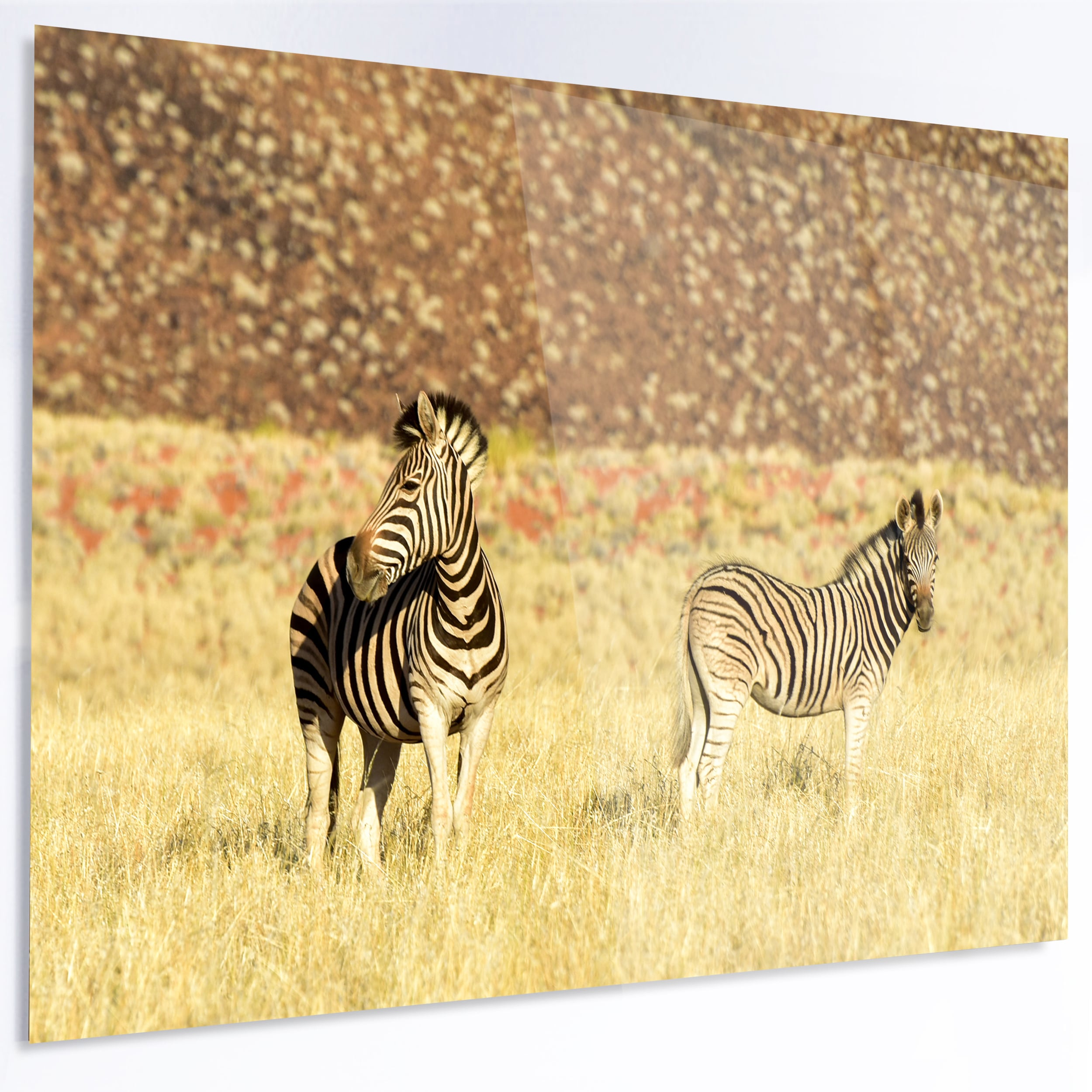 Magnificent Metal Wall Art Animals Photos - The Wall Art Decorations ...