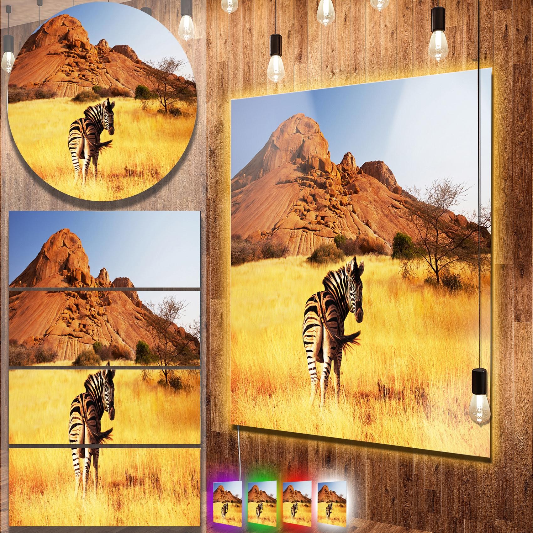 Designart \'Lonely Zebra in African Prairie\' African Animals Metal ...