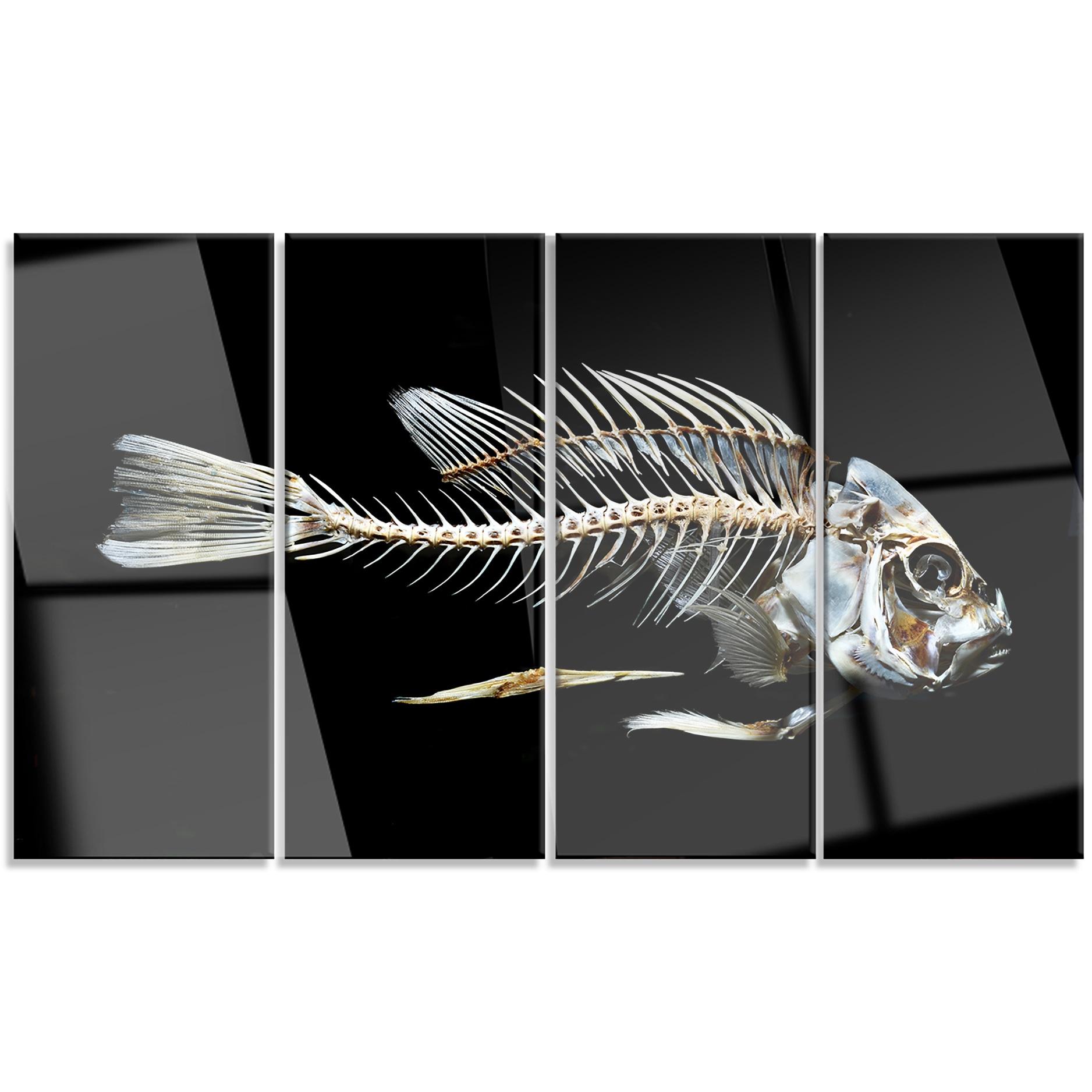 Designart Fish Skeleton Bone On Black Large Animal Metal Wall Art Free Shipping Today 20293305