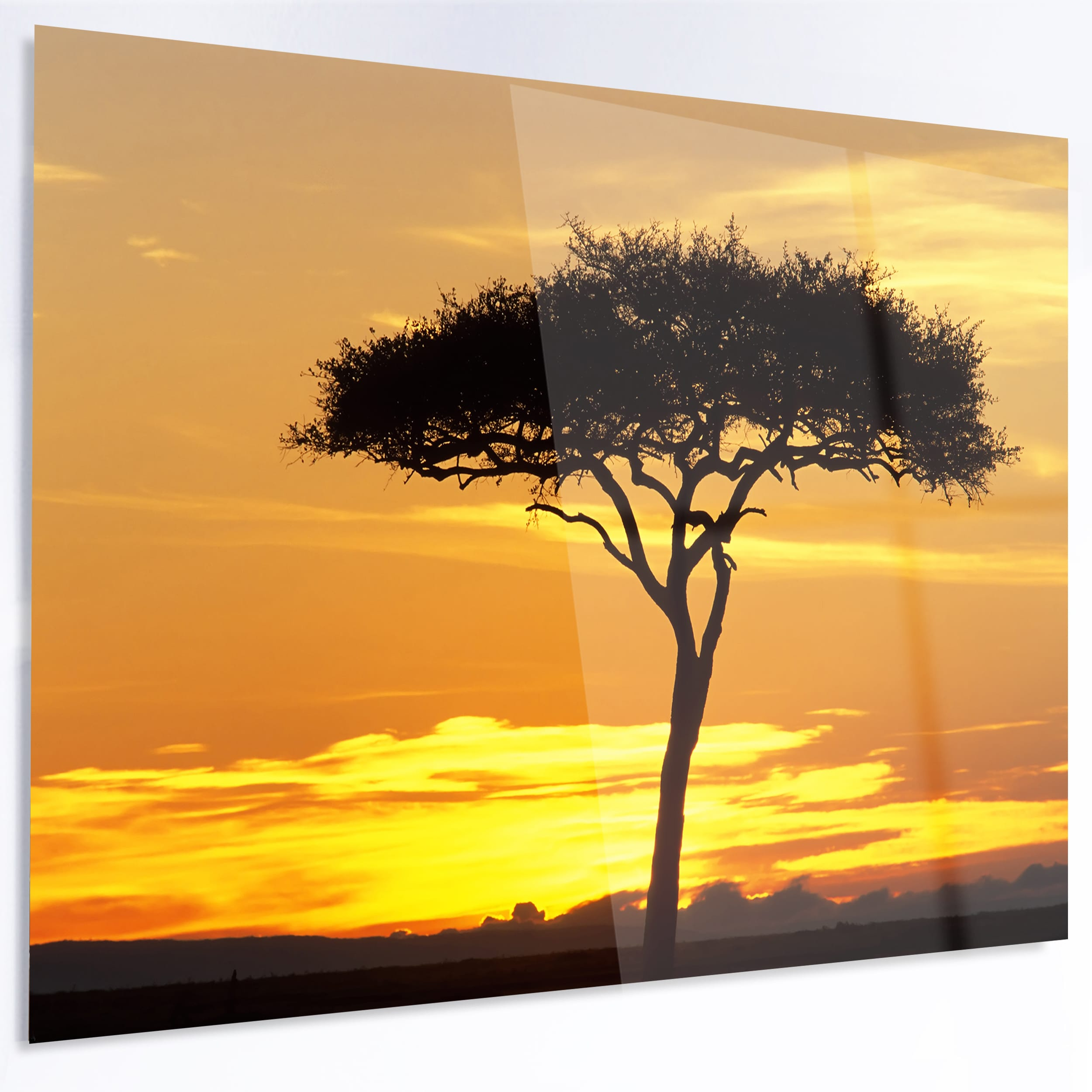 Designart \'Beautiful Sunset Through Acacia Tree\' Extra Large African ...