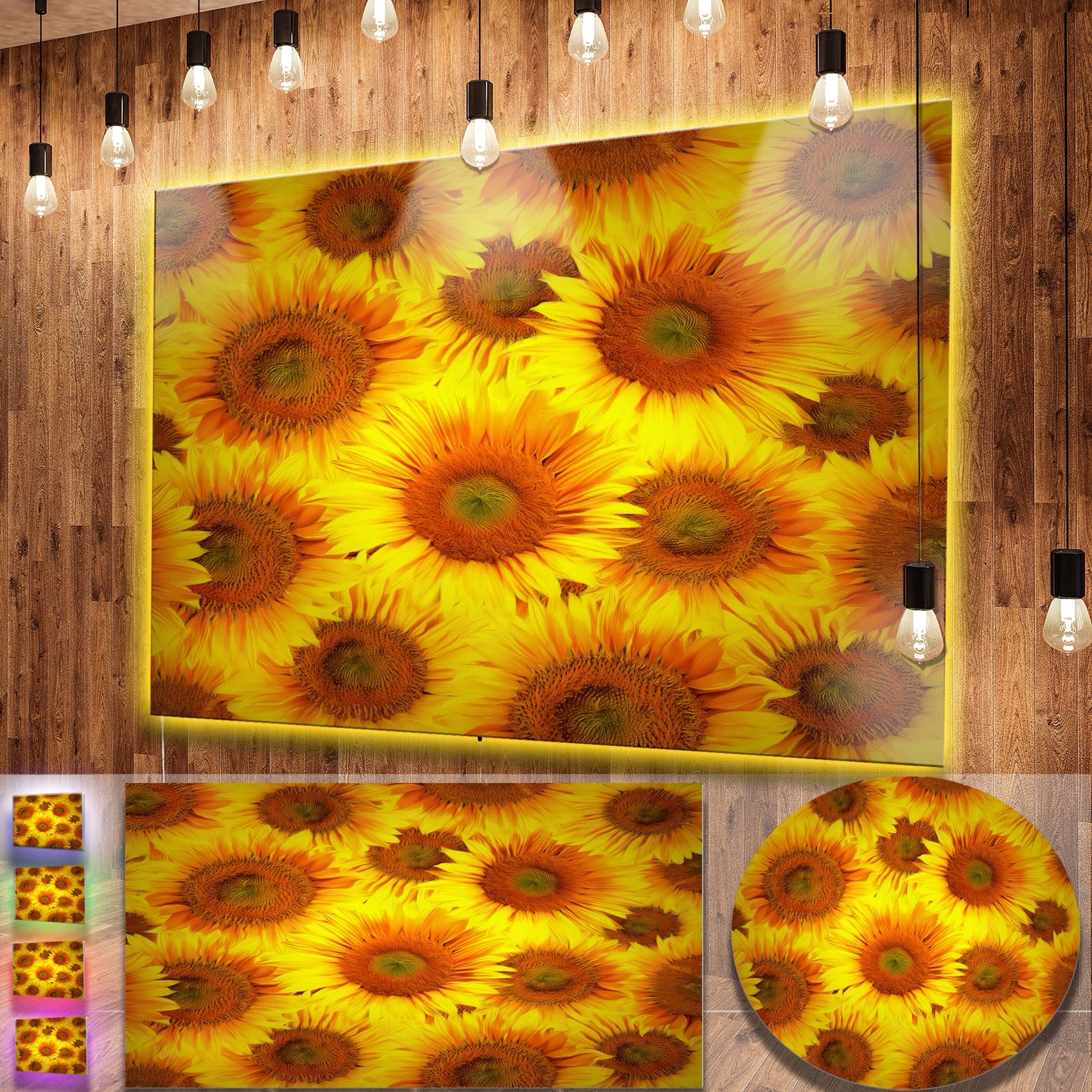 Shop Designart \'Sunflower Heads Decorative Background\' Contemporary ...